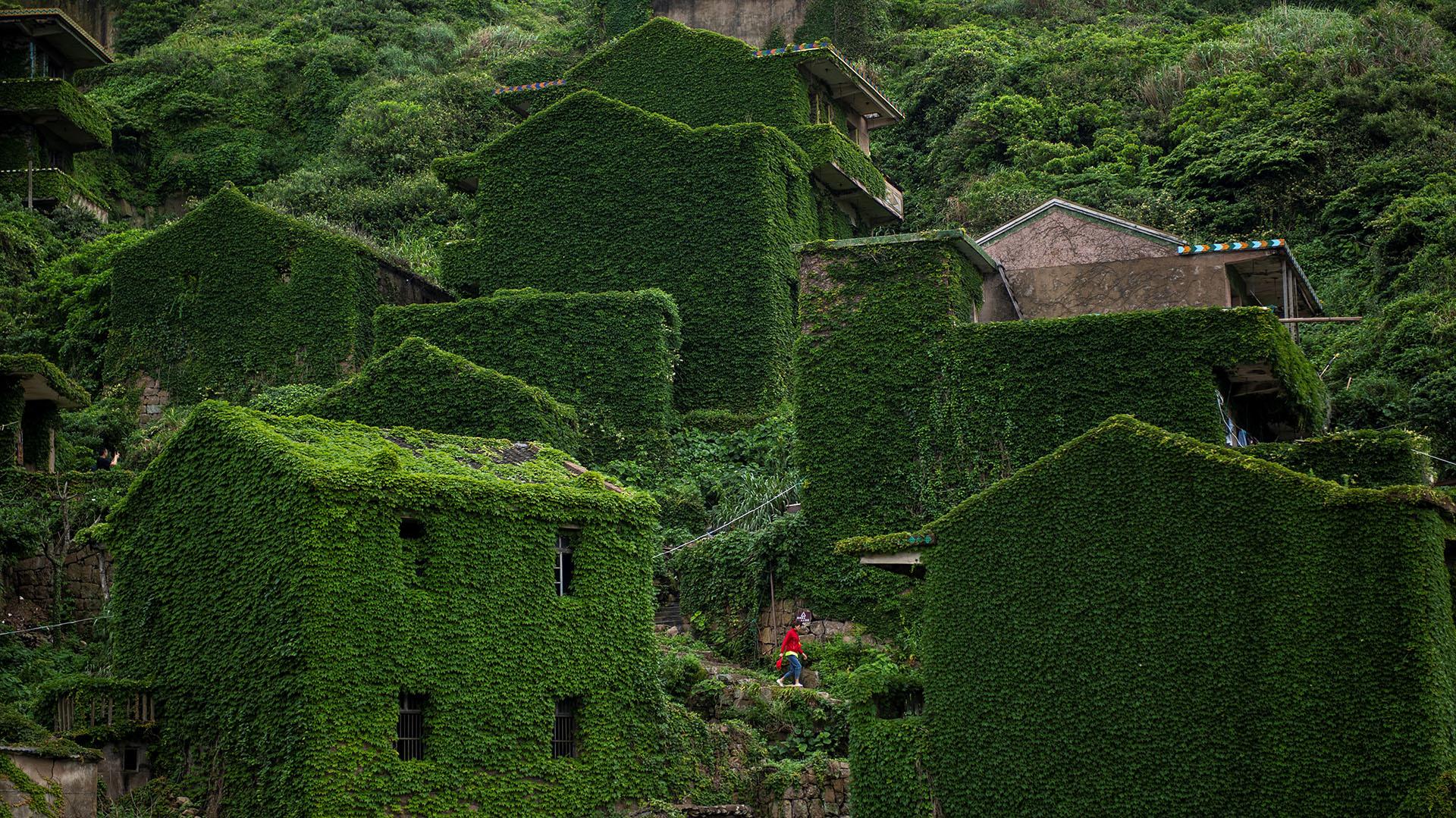 Impresionantes Fotos Muestran Cómo La Naturaleza Recuperó Su Terreno