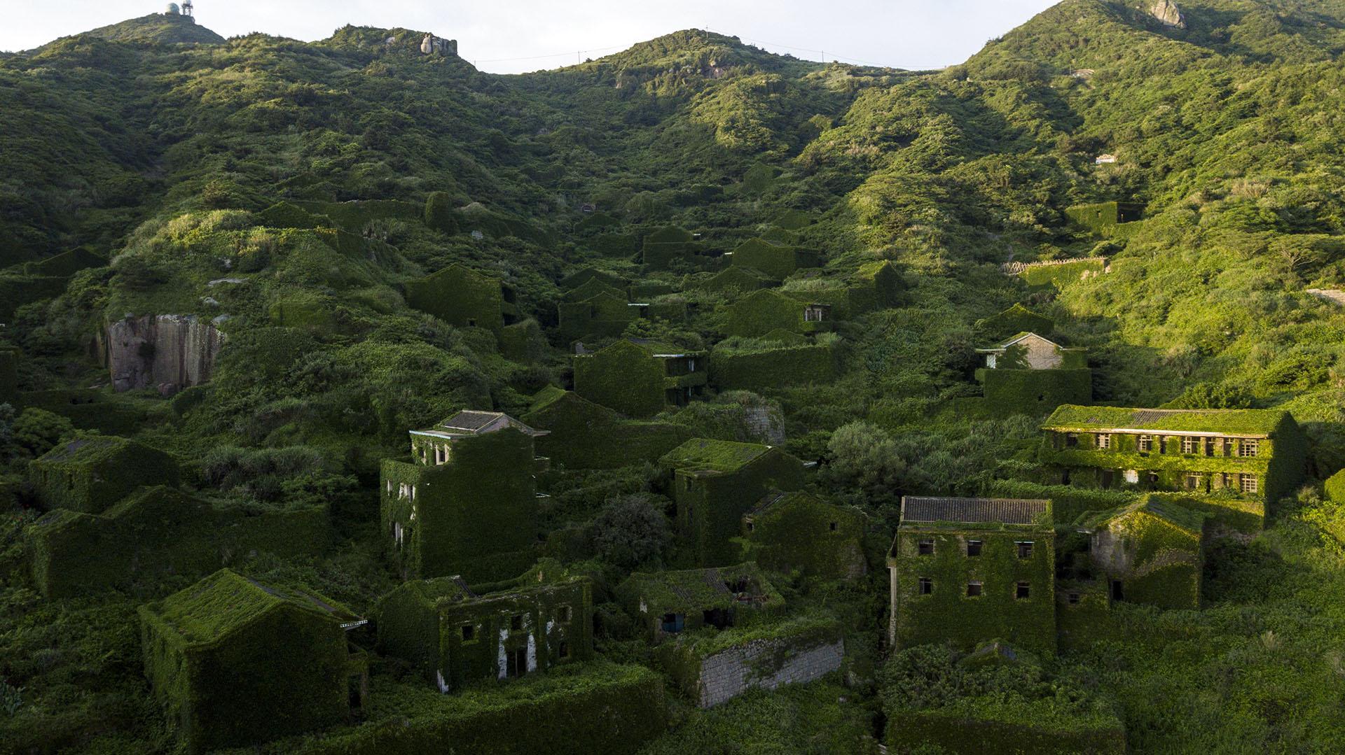 Ahora un manto de color esmeralda tapiza las calles y casas de ladrillo abandonadas