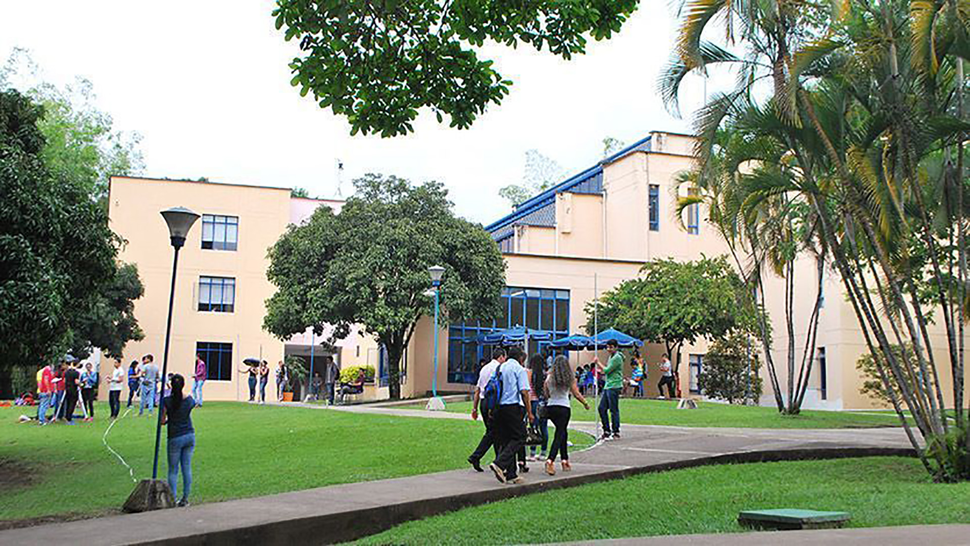 Universidad de Ibagué.