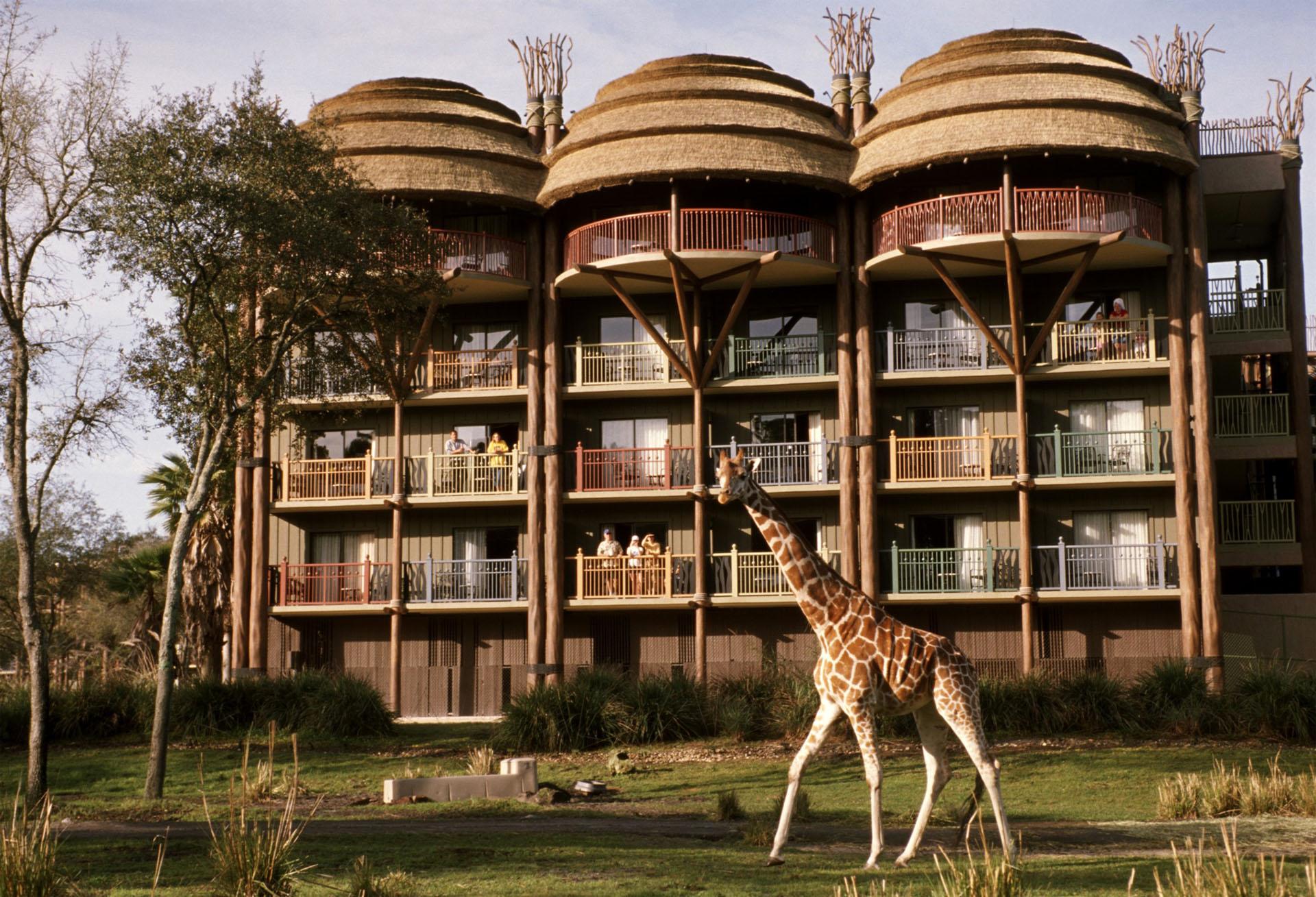 Este hotel ofrece un verdadero contacto con la naturaleza