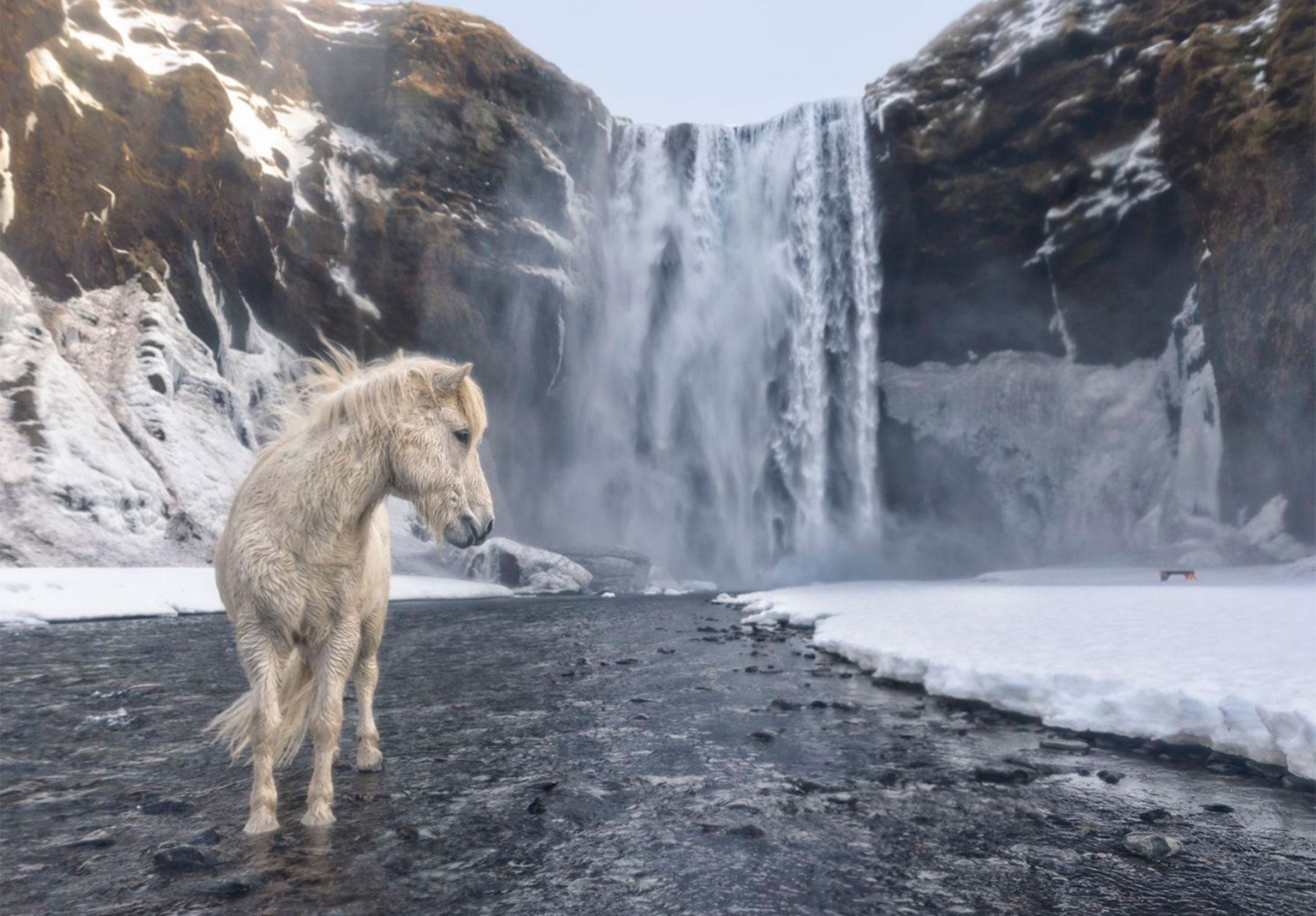 """Islandia salvaje"".- Eyvindarhölar, Islandia."