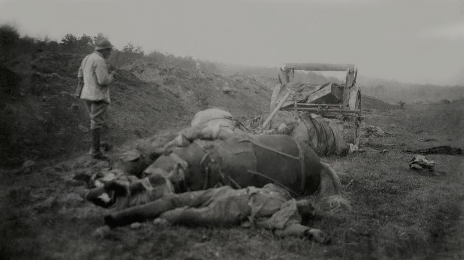 Caballos y hombres muertos en el campo de batalla