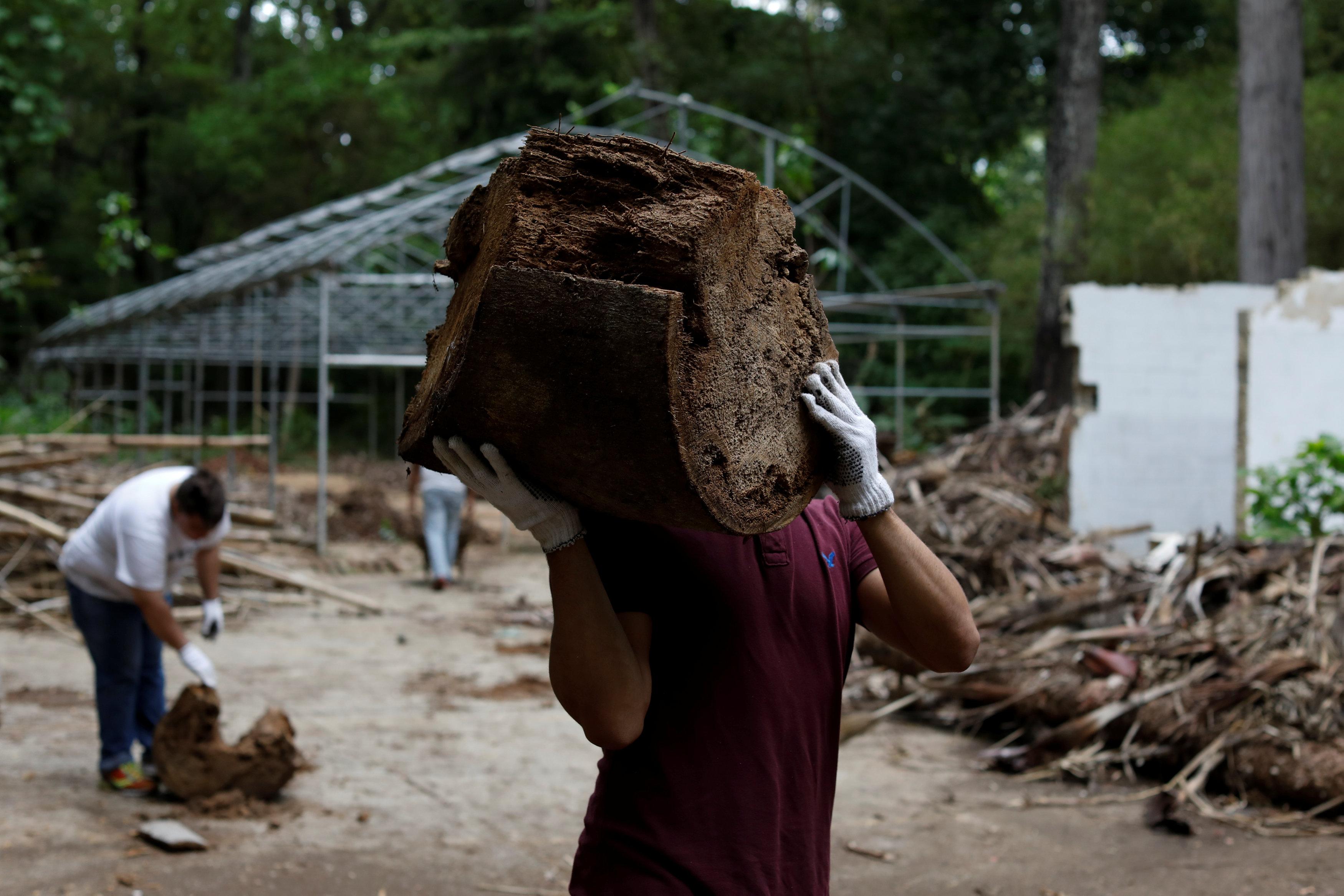 Voluntarios intentan darle mantenimiento al lugar