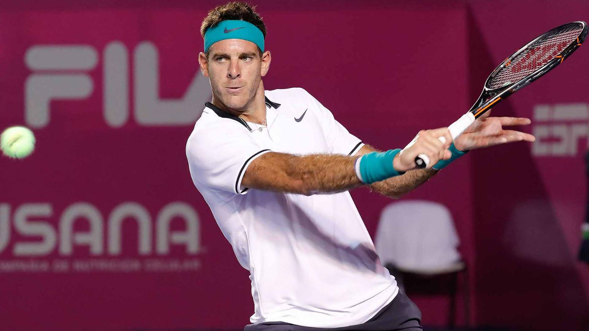 Juan Martín del Potrodebutará en el US Open ante Donald Young