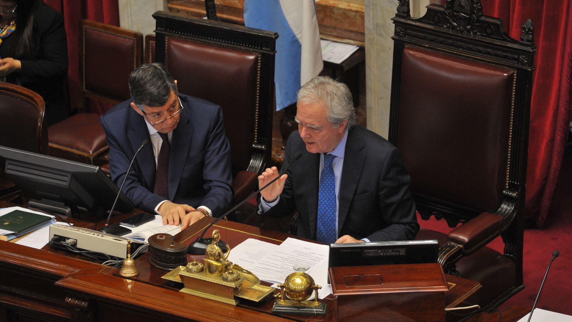 El senador Federico Pinedo
