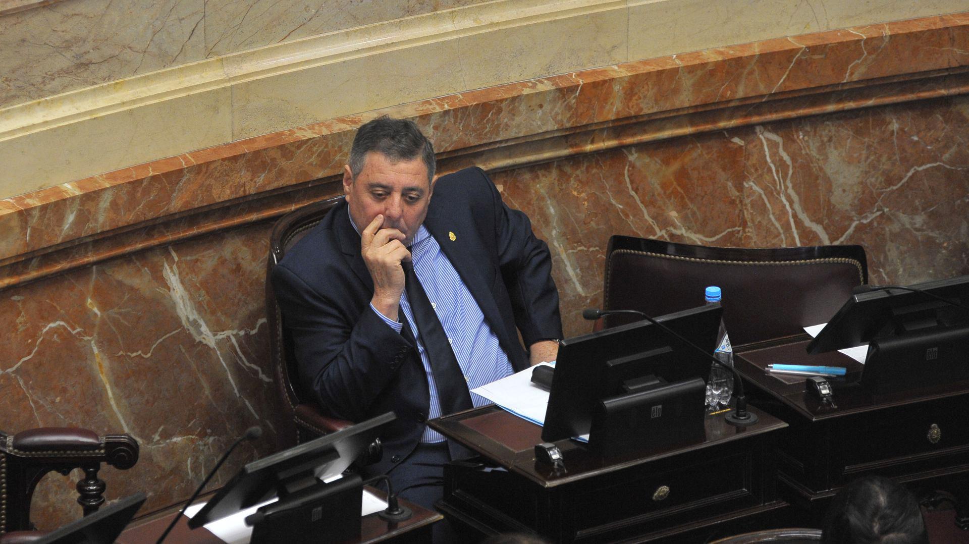El senador oficialista Alfredo De Angeli