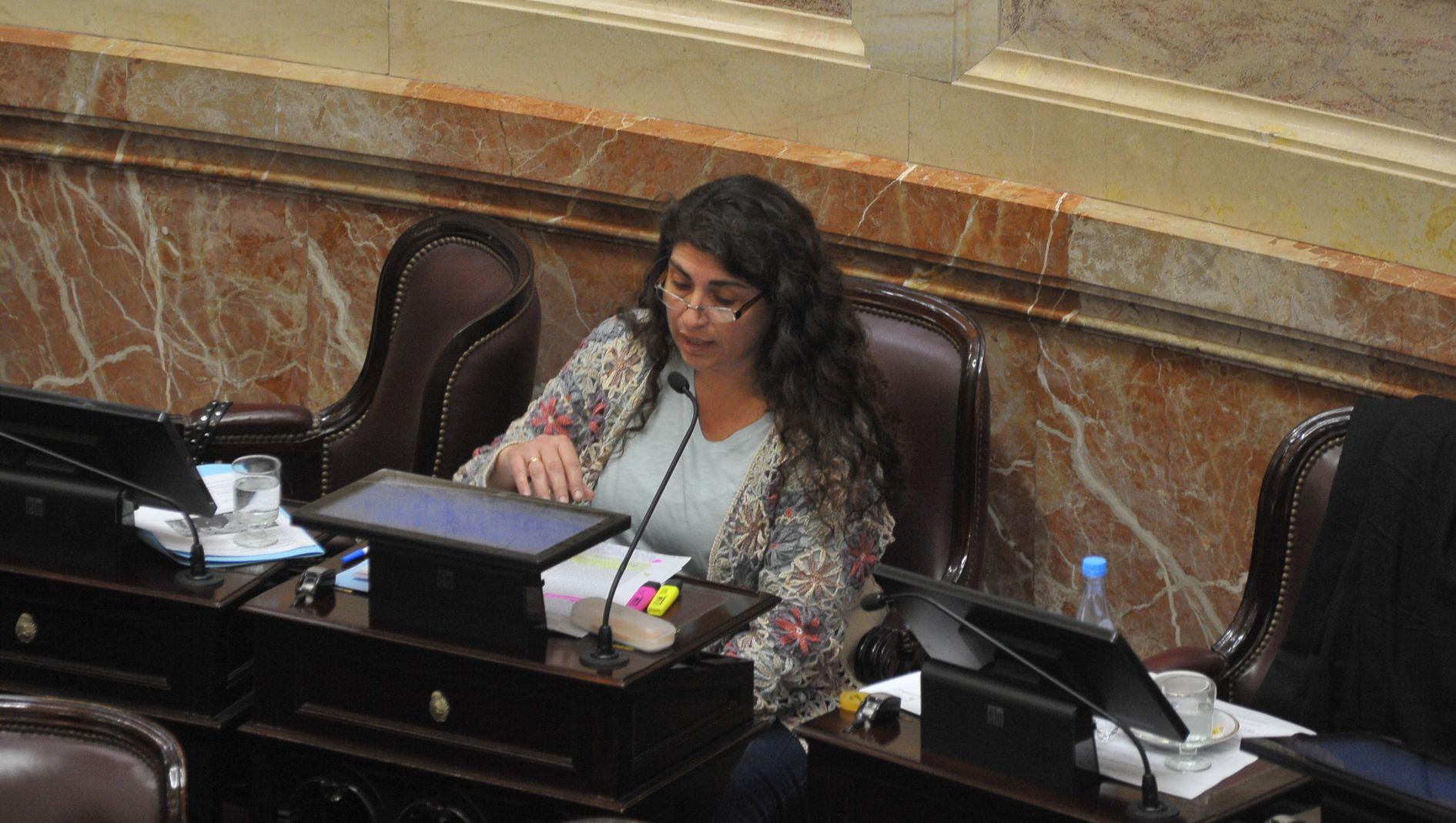 La senadora del bloque Frente para la Victoria – PJ Ana Ianni