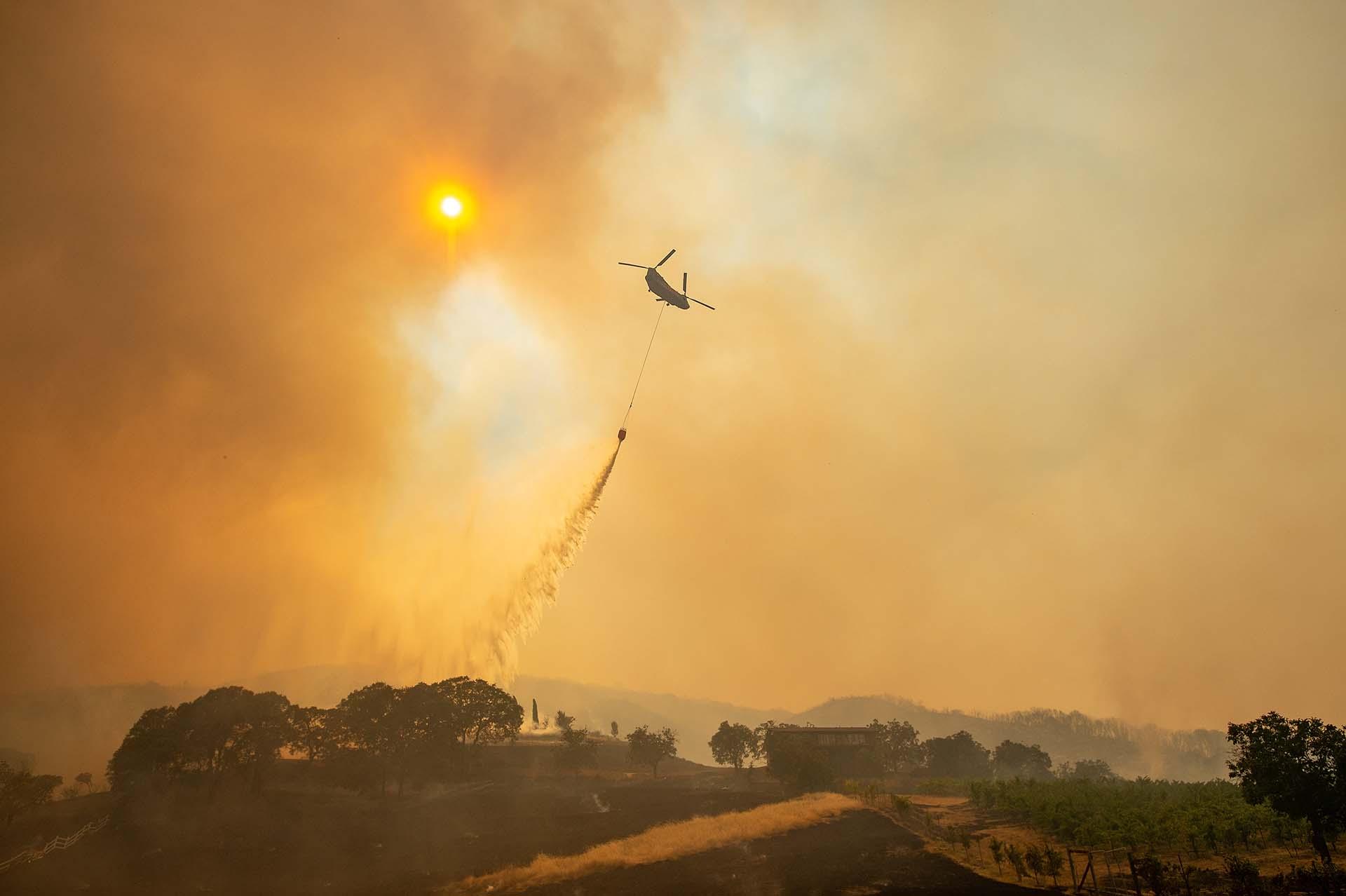 Fotos: AP y AFP