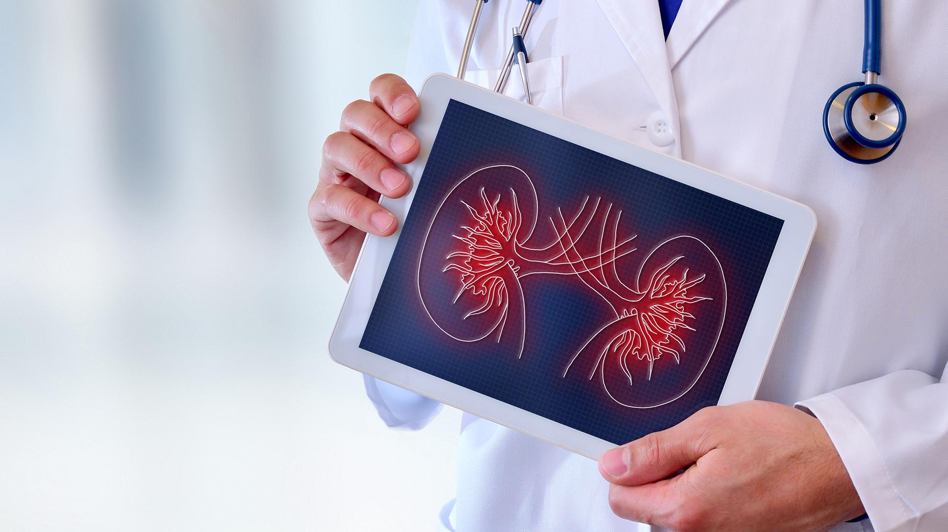 En lo que va del año en el país se realizaron 263 trasplantes de órganos de los cuales 169 fueron renales (Getty)