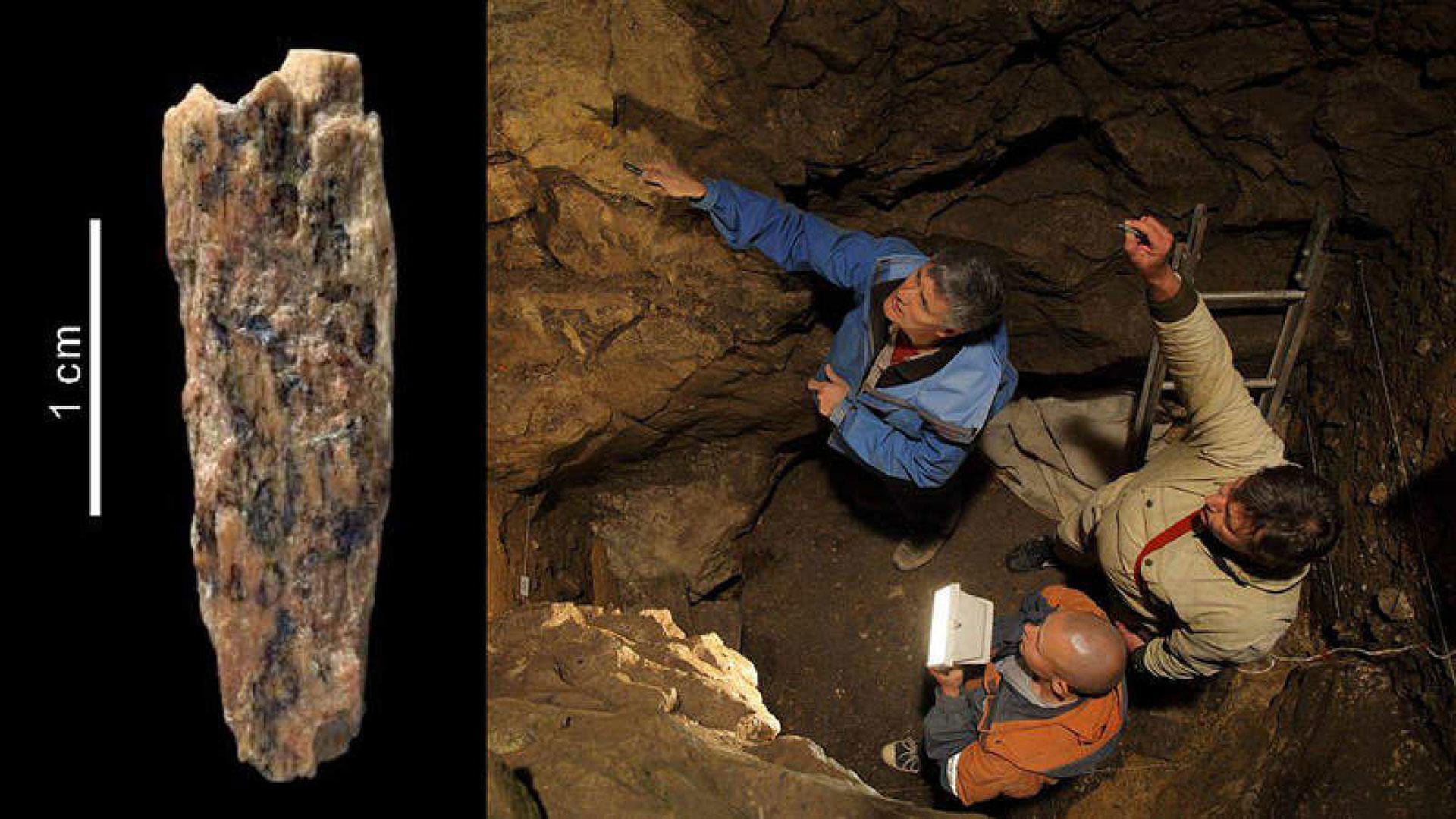 Un fragmentoreveló que hubo una descendiente de homínidos de Neanderthal y de Denísova