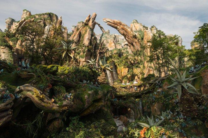 pandora bay Disney