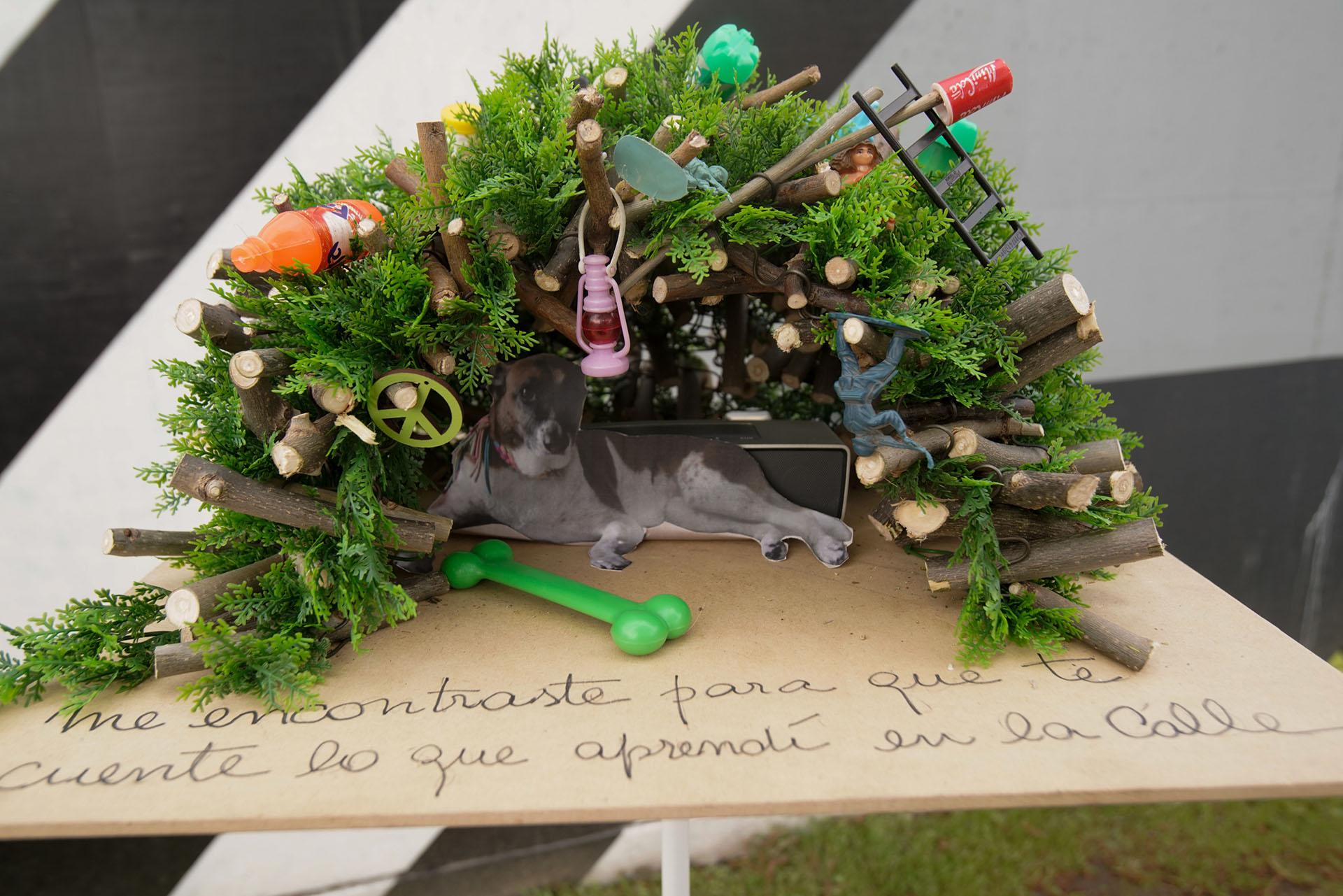 """""""Para perro con calle"""", por Cristina Le Mehaute. Realizado con tronquitos de madera, simula ser un nido con una estructura metálica fina y hojas de helechos de plástico, en forma de iglú con agregado de objetos de plástico. """"No estoy a favor de los perros de raza, es una dedicatoria especial para el perro que está vagabundeando"""", dijo a Infobae la paisajista"""