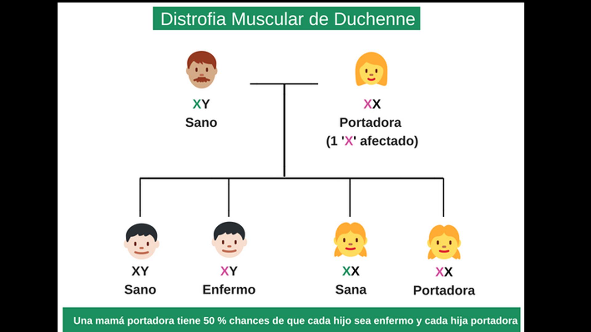 La DMD es una enfermedad genética