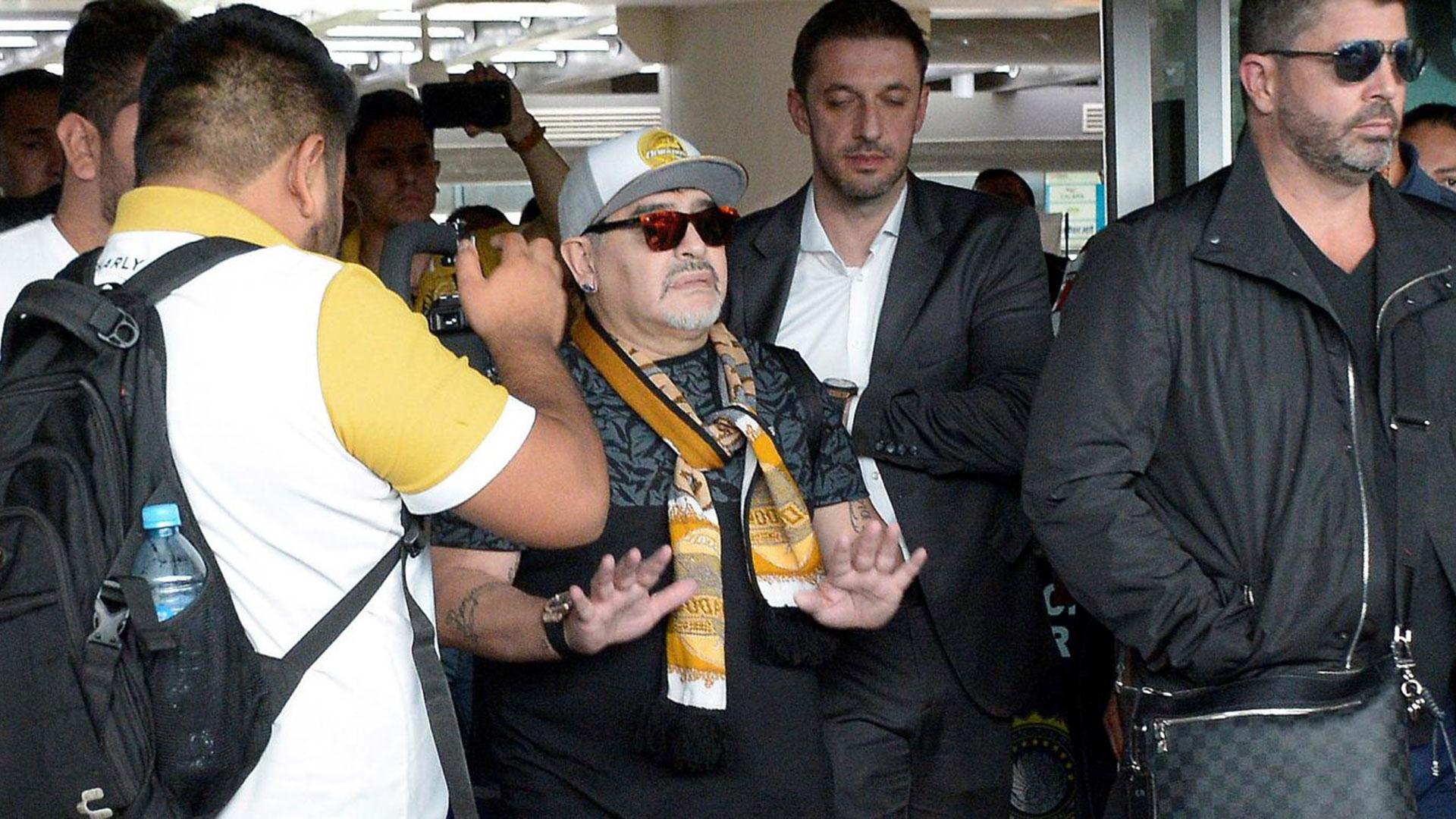 """""""Ni blanco, ni negro: dorado"""", lanzó Maradona a su llegada al aeropuerto de Sinaloa, México, en una entrevista con ESPN ante cientos de fanáticos que fueron a recibirlo (AFP). Sin dudas, la llegada de Maradona potenciará al club y al equipo"""