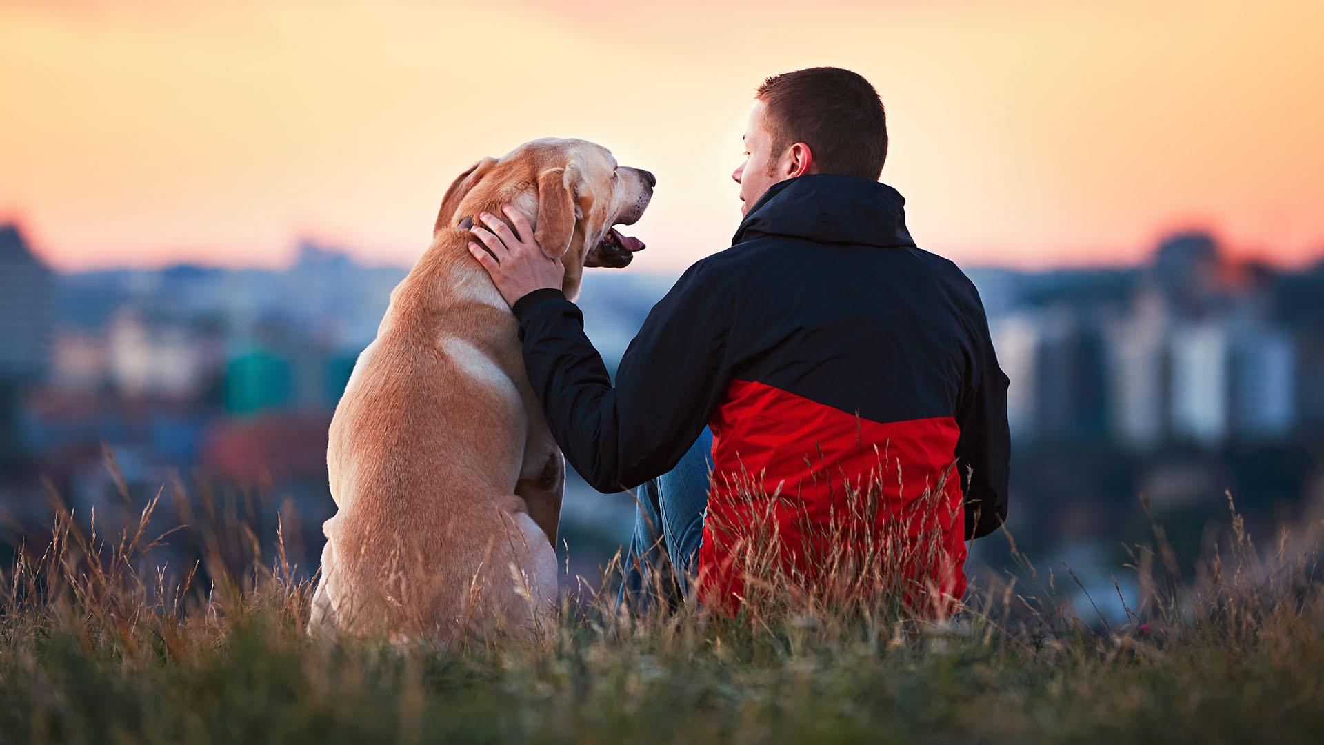 Resultado de imagen para humanos hablando con perros