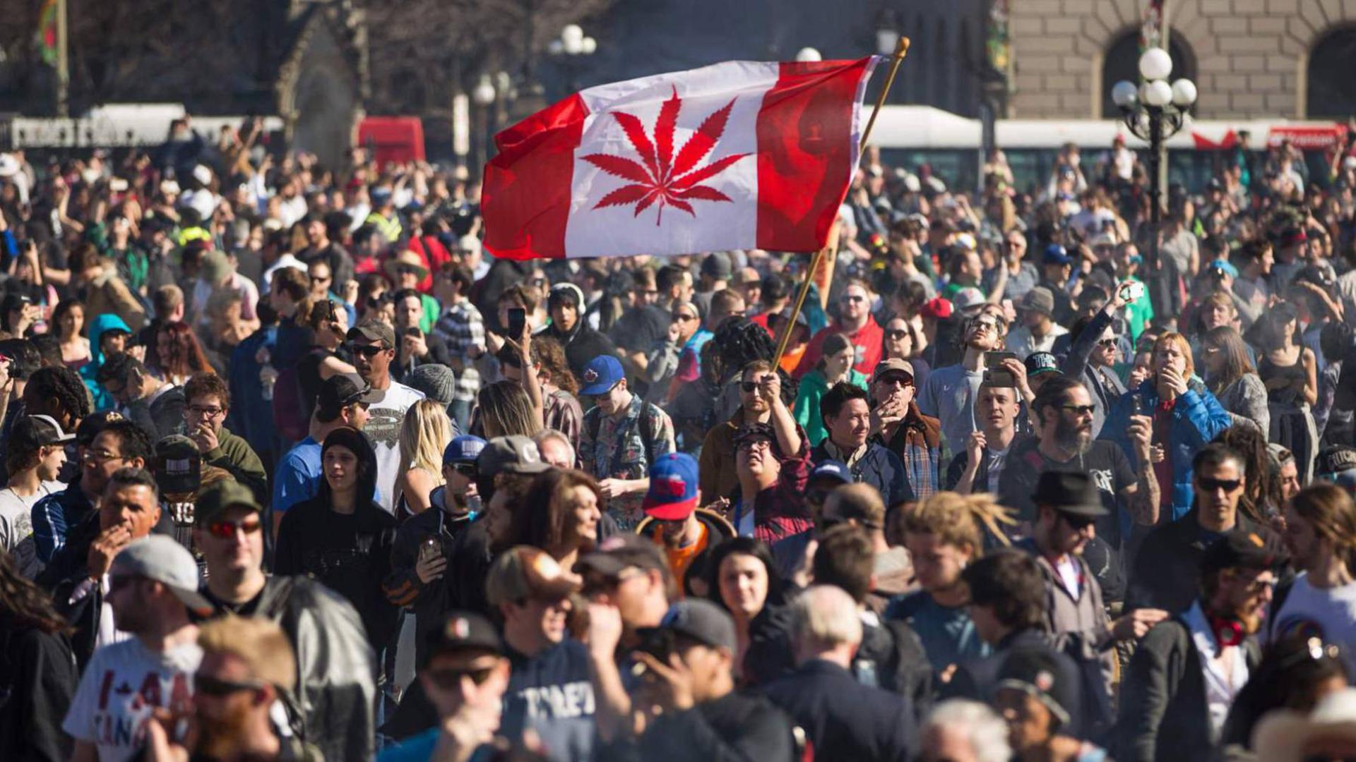 Aumentaron los consumidores de cannabis desde la legalización (AFP)