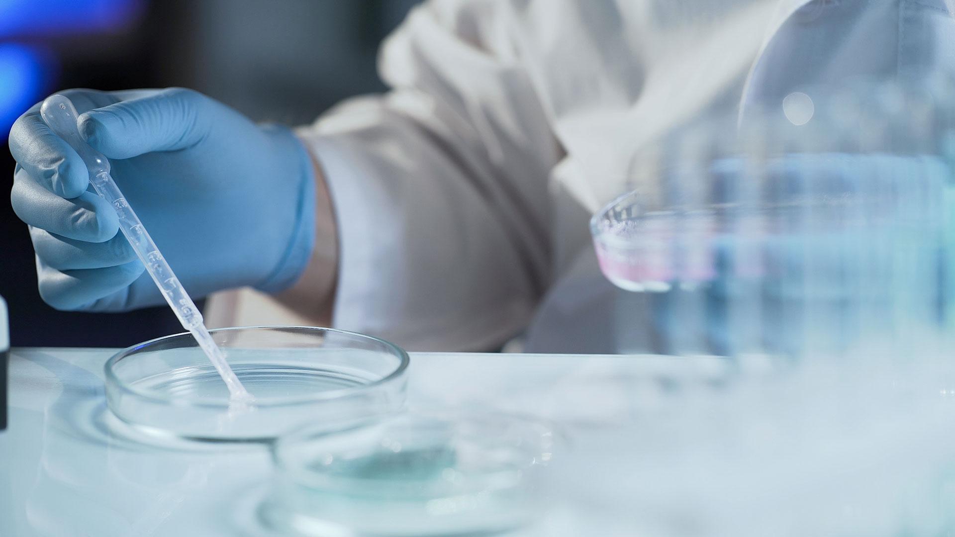 El bloqueo de las proteínas IRE-1a y XBP1 sería efectivo para revertir la resistencia a la inmunoterapia (Getty)