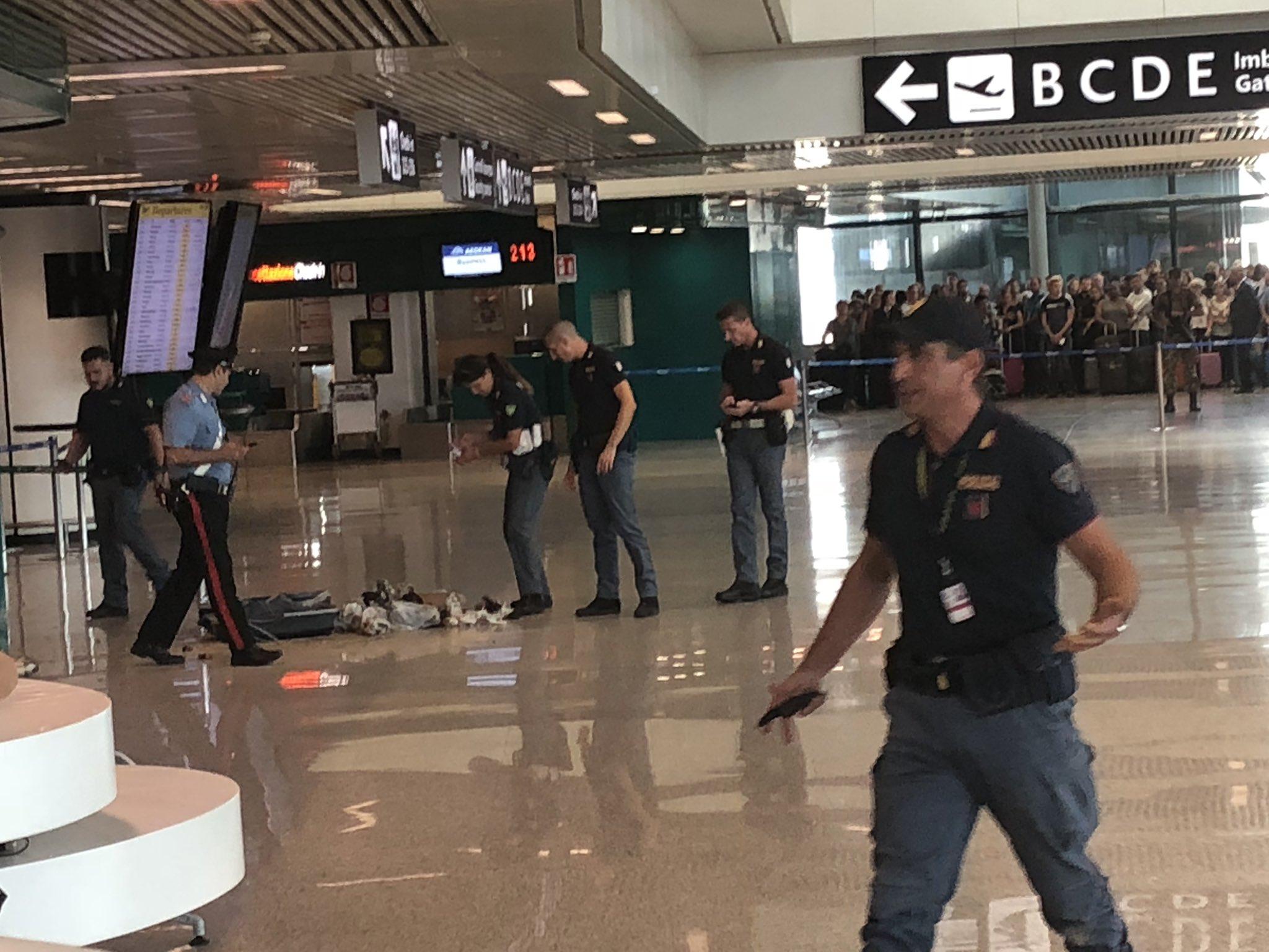 La maleta abandonada en uno de los halls del Aeropuerto de Fiumicino ya fue detonada por la policía de Roma. Instantes después se sorprenderían con su contenido (Ned Donovan/Twitter)