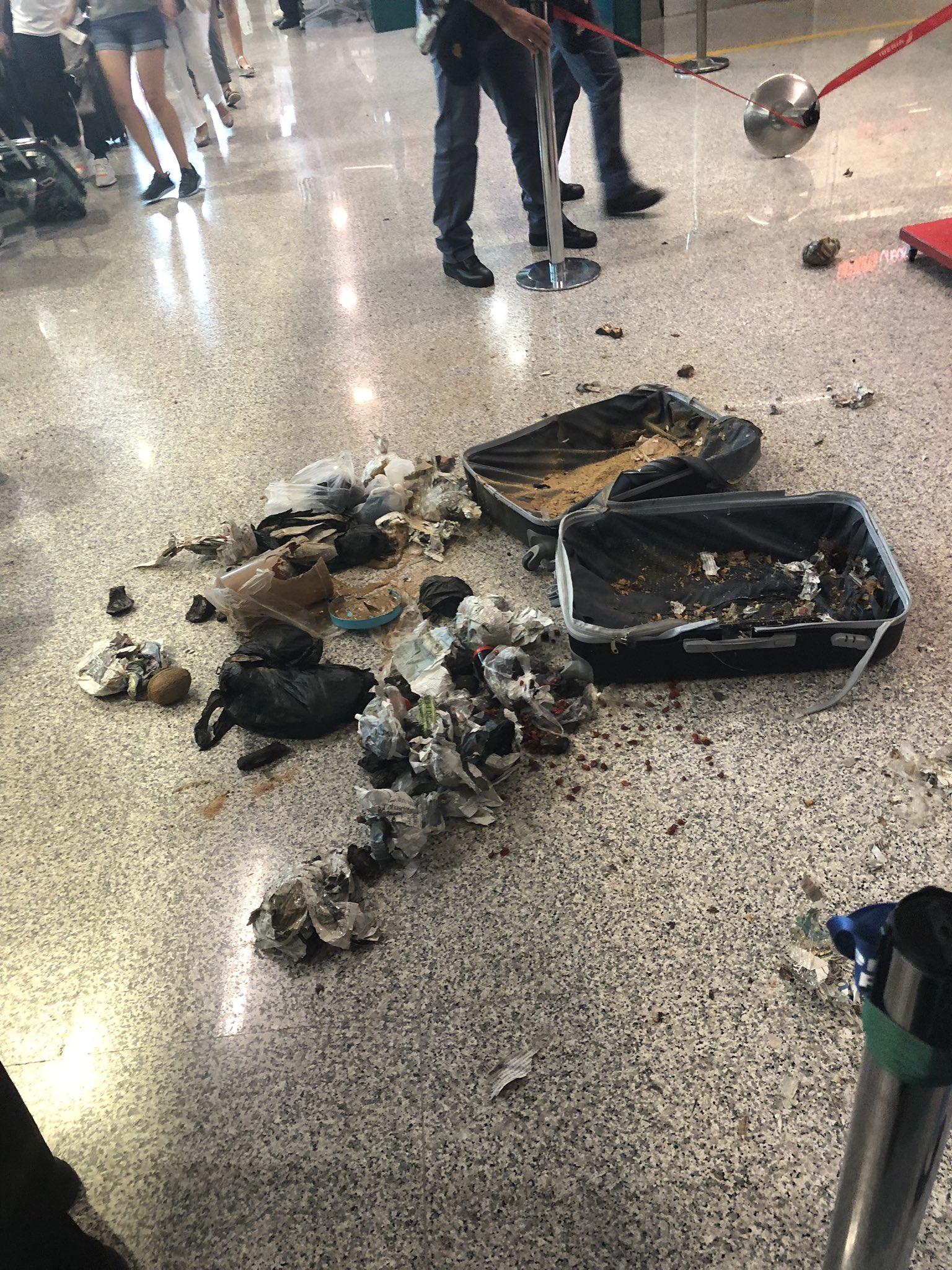Restos de ropa arruinada, objetos de higiene personal y… ¡cocos! fue lo encontrado en una valija abandonada en el Aeropuerto de Fiumicino (Ned Donovan/Twitter)