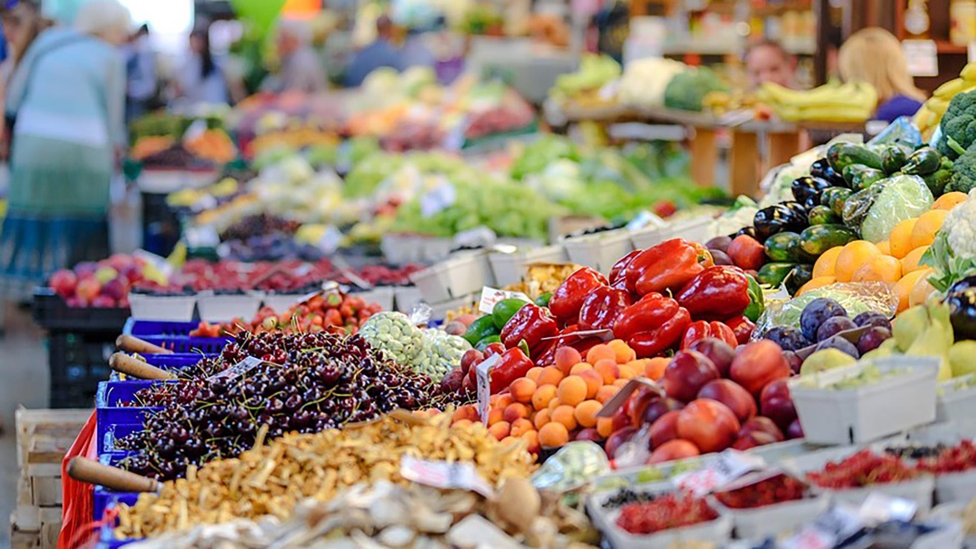 Comer más vegetales y reducir la ingesta de alimento de origen animal proporciona una buena salud Foto: (Archivo)