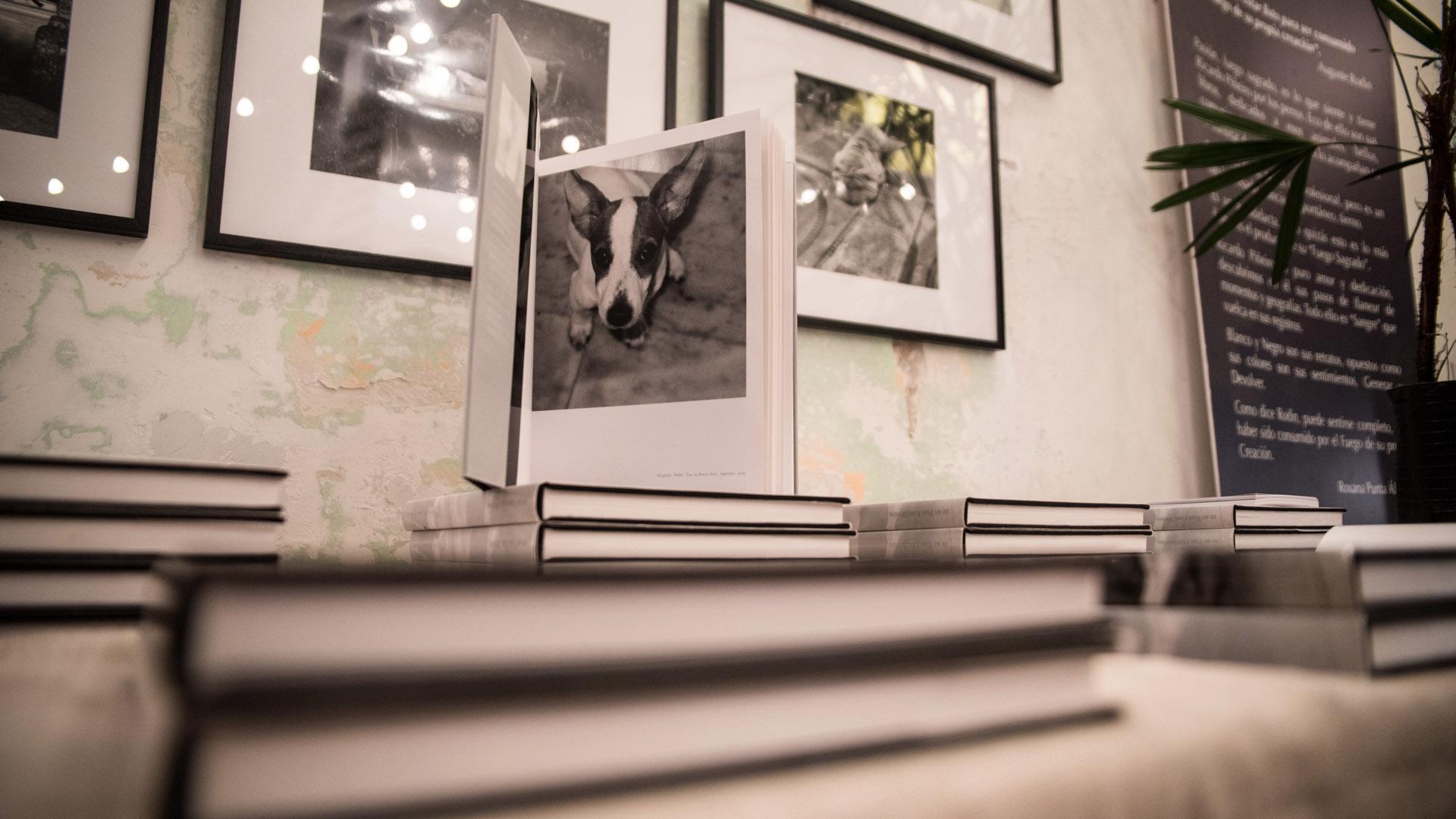La recaudación del libro que reúne retratos de perros del mundo será donado a Fundación Zorba