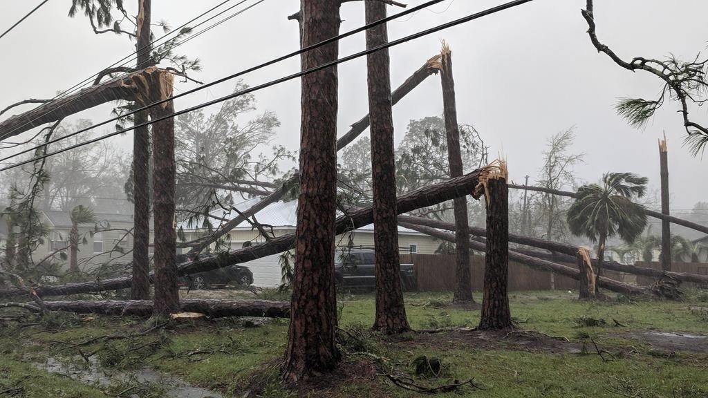 Port St. Joe, Florida (Douglas R. Clifford/The Tampa Bay Times via AP)