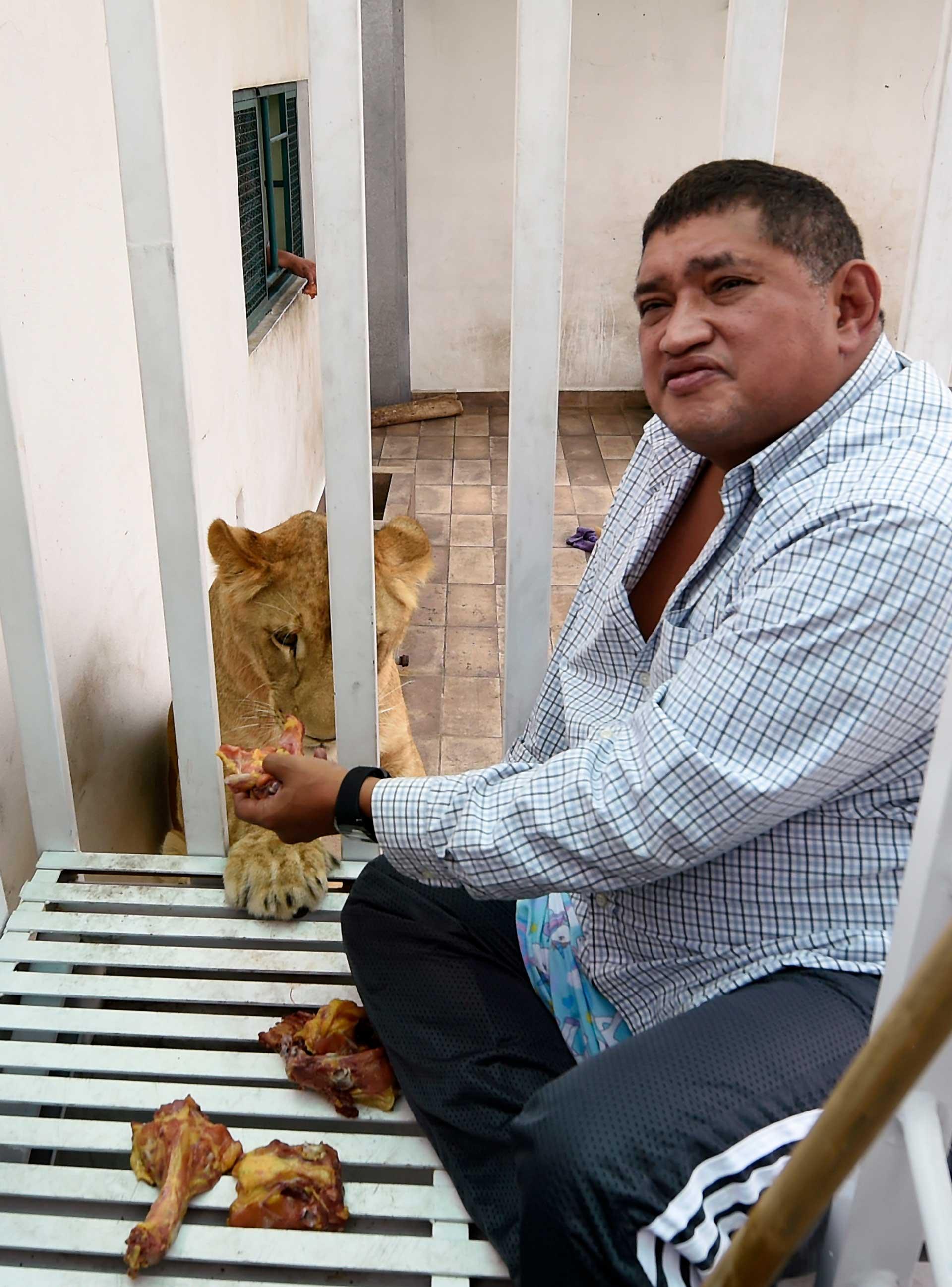 """""""Yo sí estoy bien consciente de lo que tengo, si no los manejas bien se vuelven bien incómodos, o sea no es un perro que puedas tener en la sala de tu casa"""", dice el dueño de la manada capitalina, Omar Rodríguez, un empresario de 48 años"""