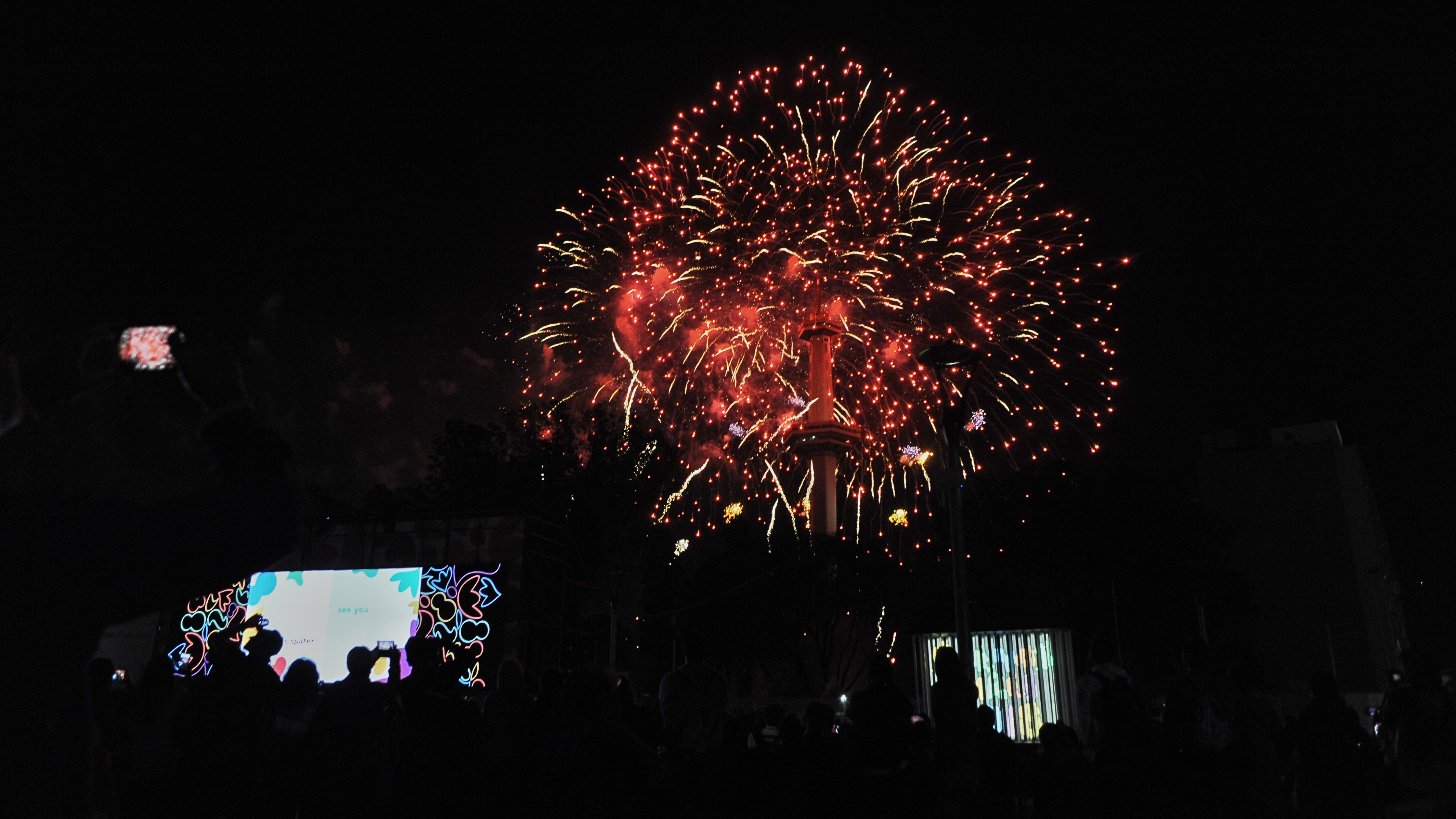 Los fuegos artificiales completaron el show(Patricio Murphy)