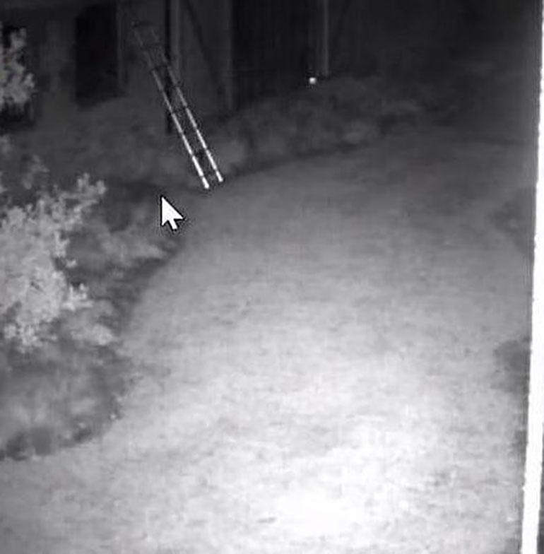 Los ladrones intentaron ingresar a la mansión con una escalera