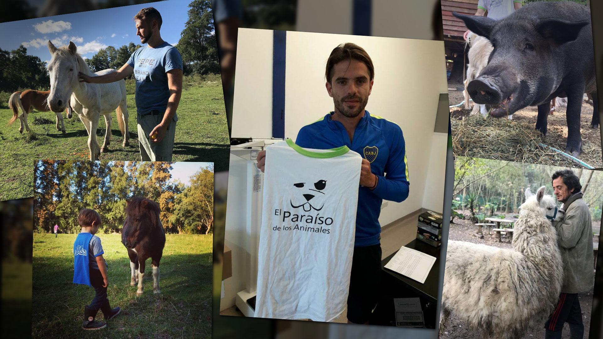 El Paraíso de los Animales realiza visitas periódicas y rifas que ayudencon los gastos diarios. Fernando Gago fue uno de los jugadores de Boca que firmó una camiseta que se sorteó el año pasado.