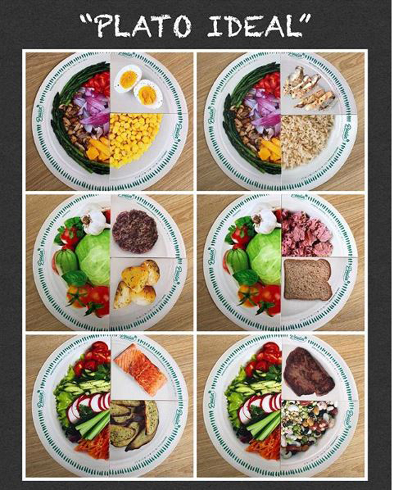 """""""Plato ideal"""", verduras y proteínas, un plato lleno de nutrientes para las comidas del día"""
