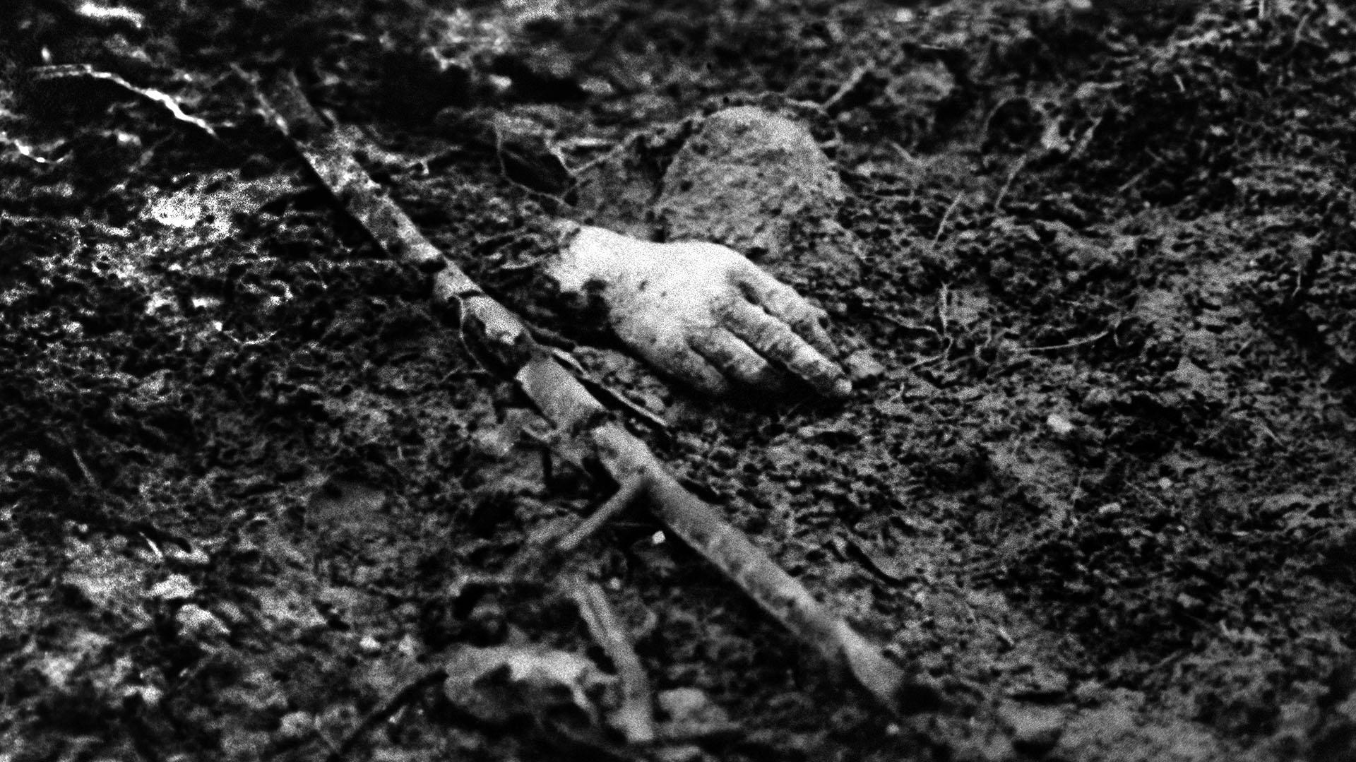 Las batallas más mortíferas y decisivas de la primera guerra mundial se libraron en Europa, en el frente occidental rozando los fangosos campos del norte de Francia y Bélgica (STF / AFP)