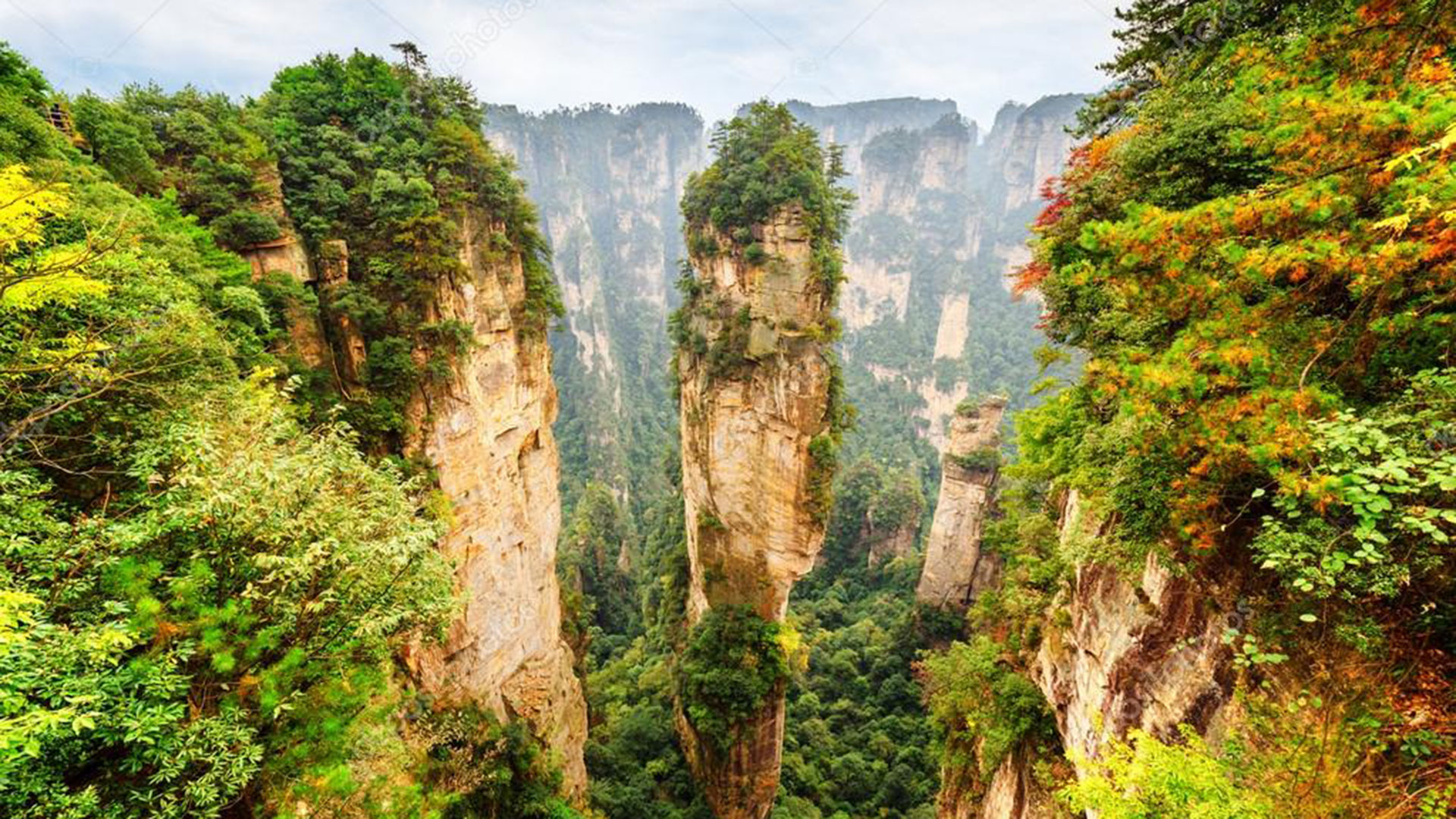 La película se inspiró en el parque nacional chino Zhangjiajie declarado Patrimonio de la Humanidad por la UNESCO.