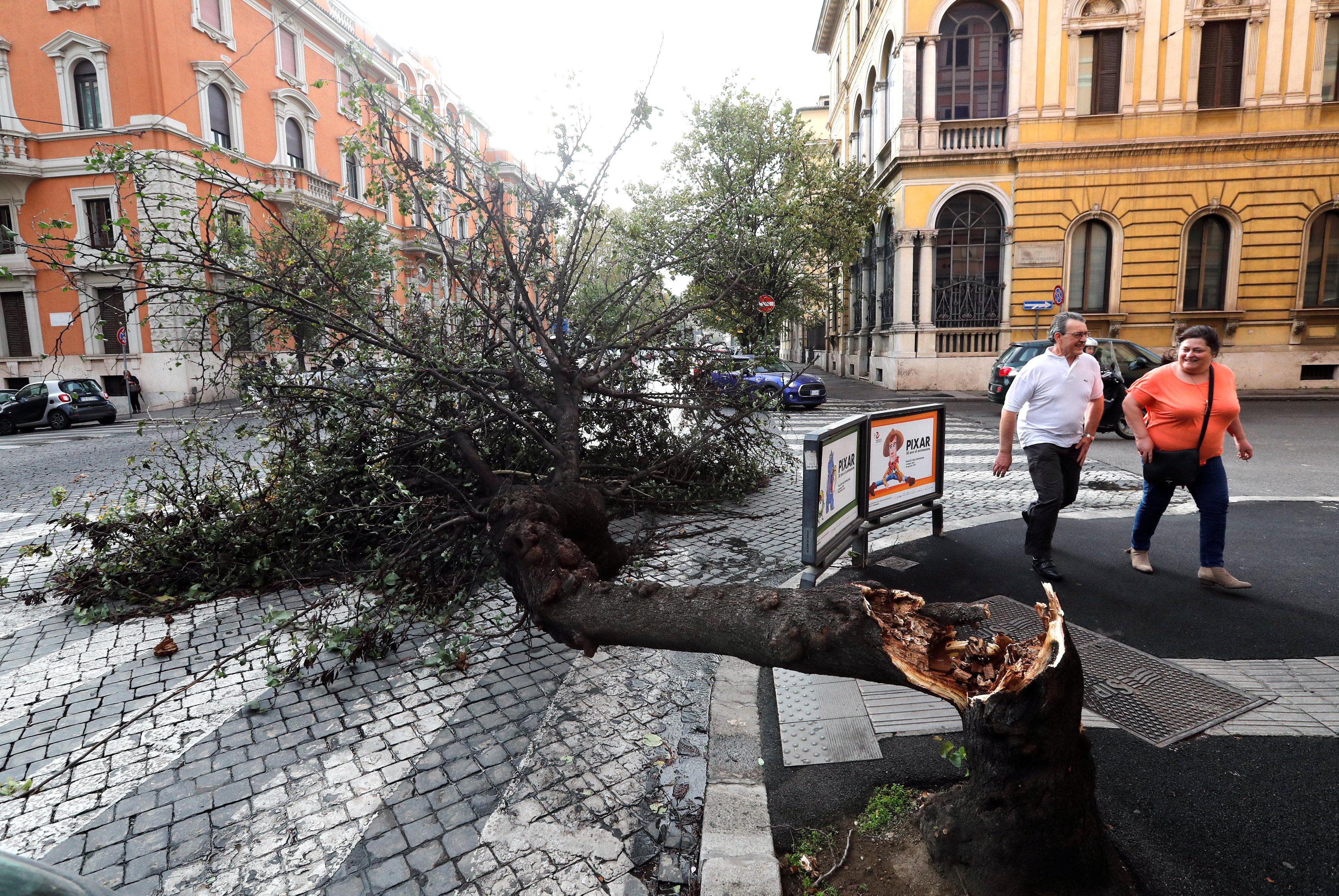 Un árbol caído en Roma (REUTERS/Stefano Rellandini)