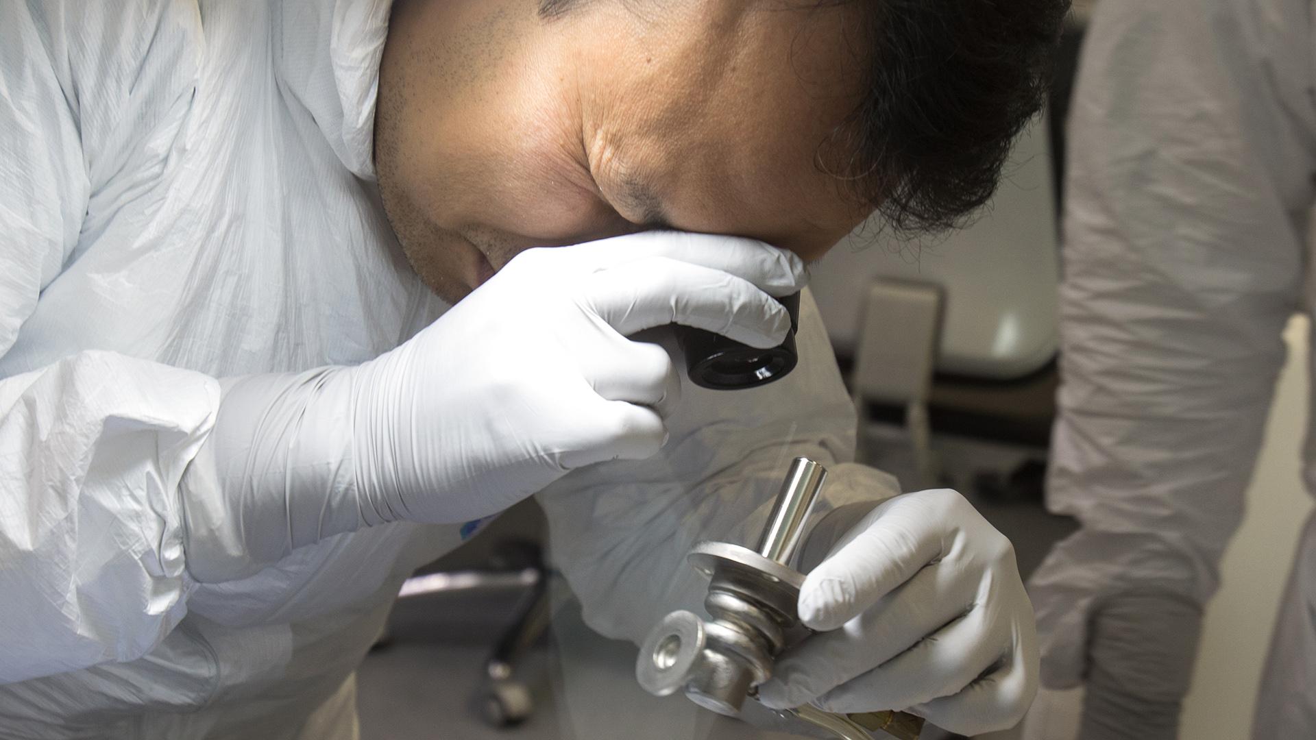 Las células utilizadas fueron creadas usando células madre iPS procedentes de donantes que tienen algún tipo de inmunidad (ALEX HALADA / AFP)