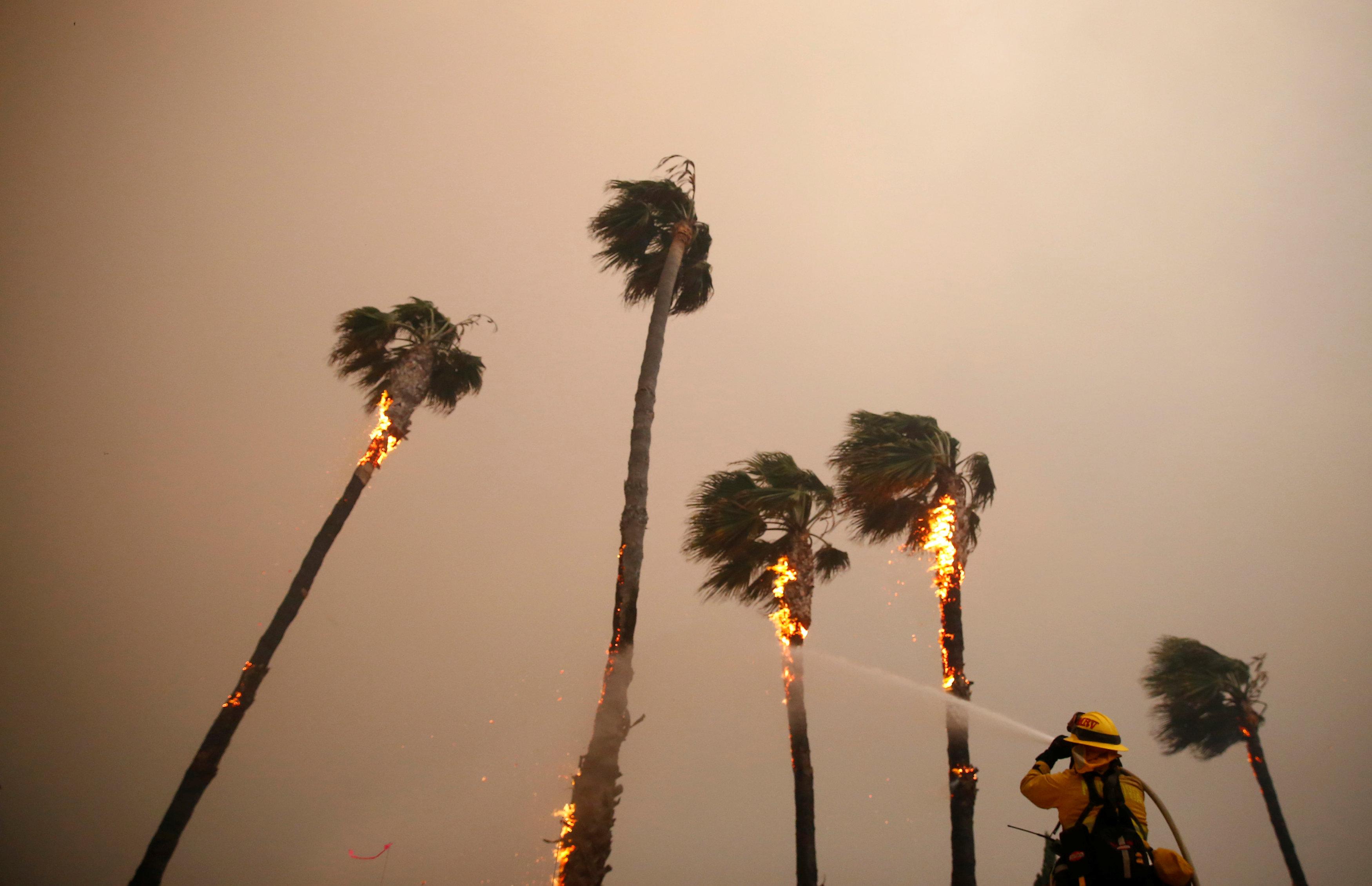 Incendios en Malibú. (REUTERS/Eric Thayer)