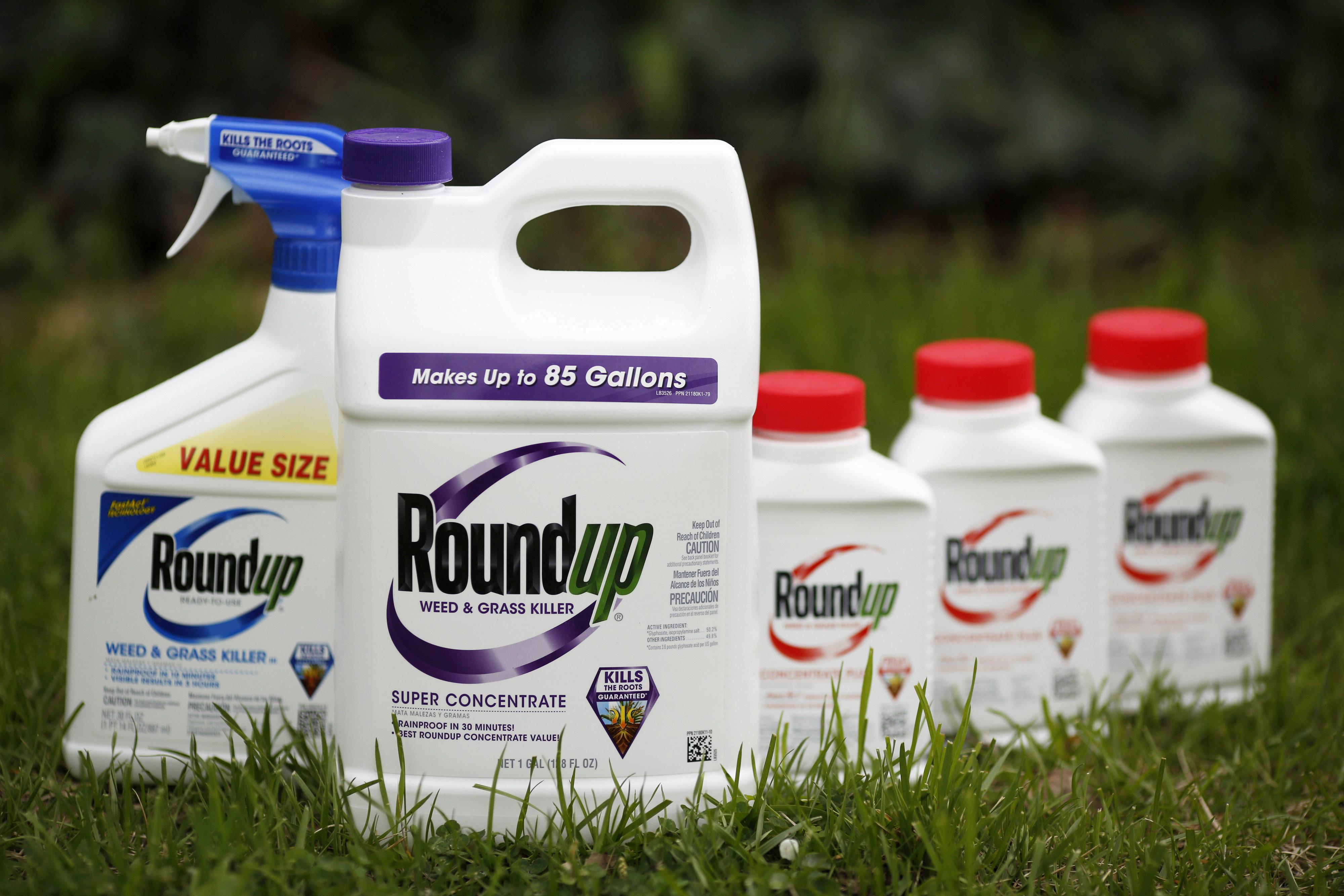 El herbicida Roundup de Monsanto, elaborado a base de glifosato (Foto: Bloomberg / Luke Sharrett)