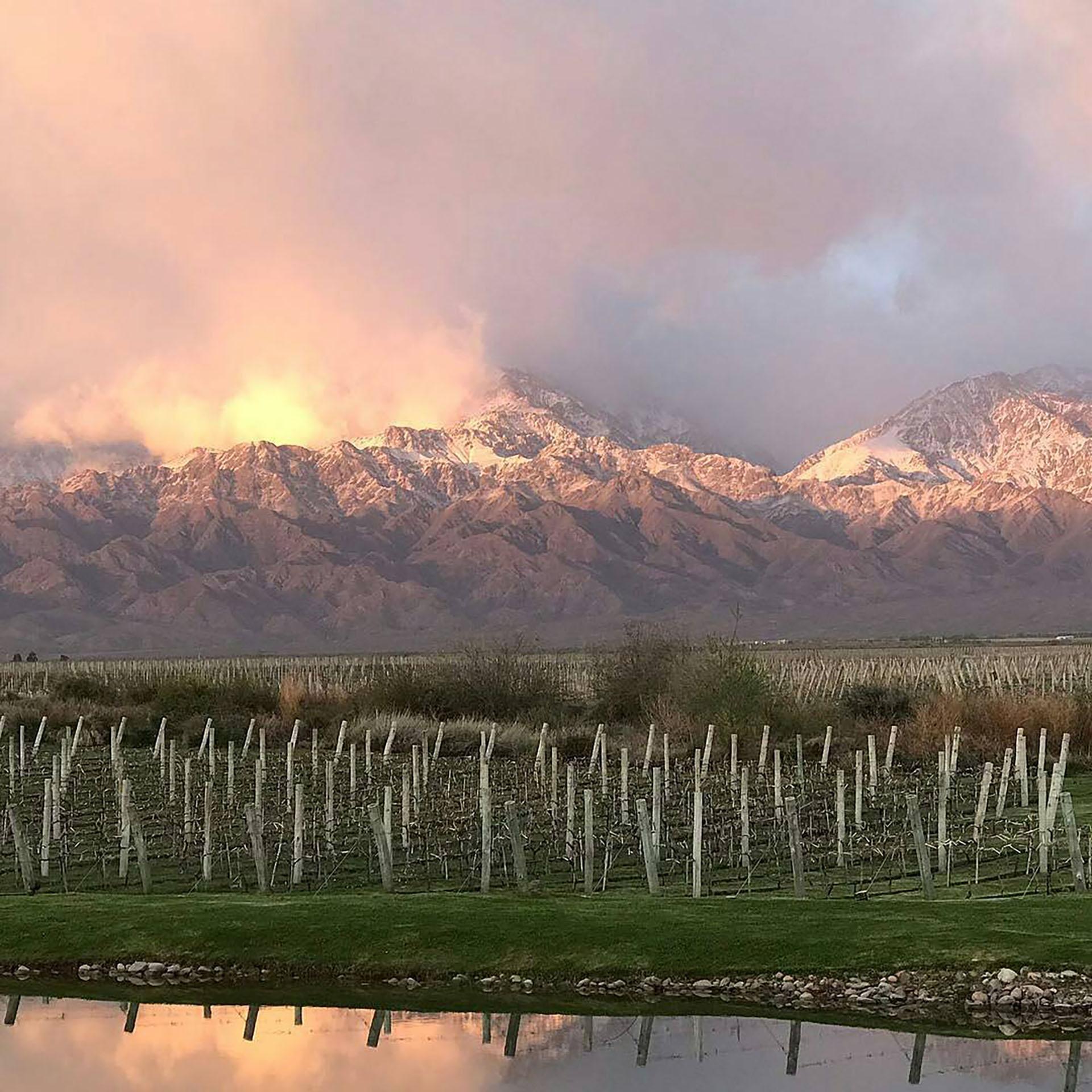 Rodeados de viñedos y de imponentes paisajes, los enamorados podrán disfrutar de una oportunidad única (@thevinesresortandspa)