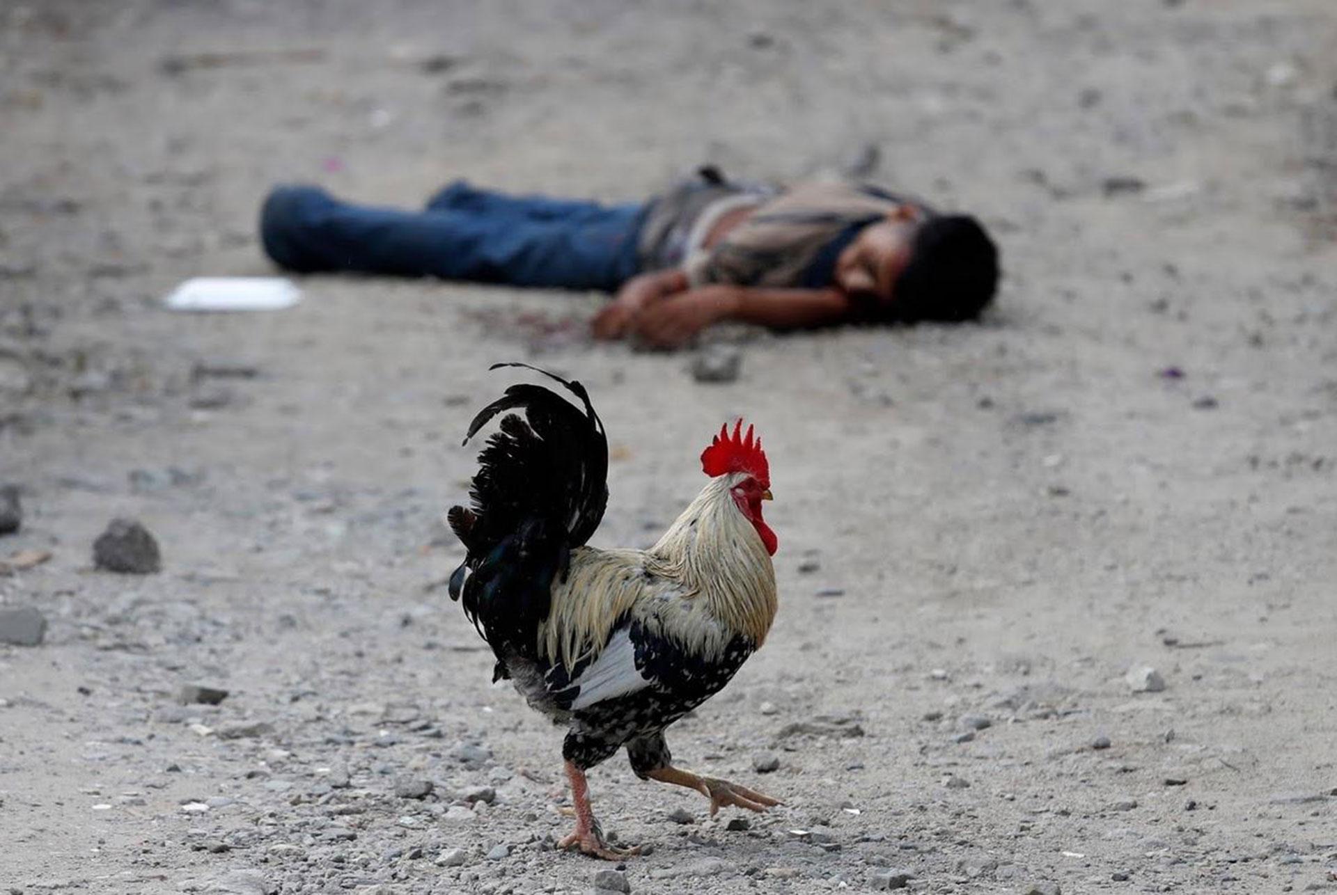 La violencia en Honduras no cesa y la gente busca escapar de ese oscuro panorama (Reuters)