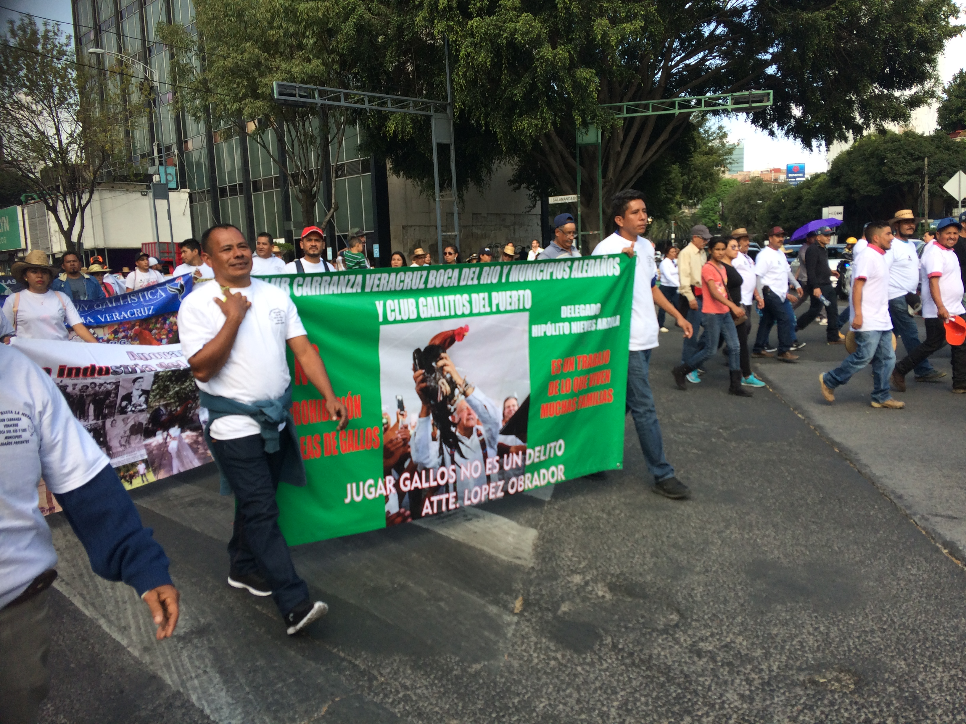 Gente de distintos estados del país viajó hasta la capital para sumarse a la protesta