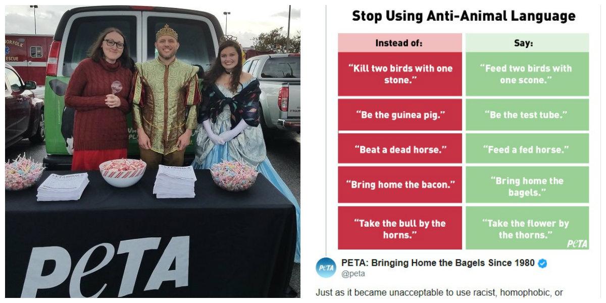 La organización sugirió frases alternativas que no incluyan el maltrato animal en su lenguaje (Foto: Especial)