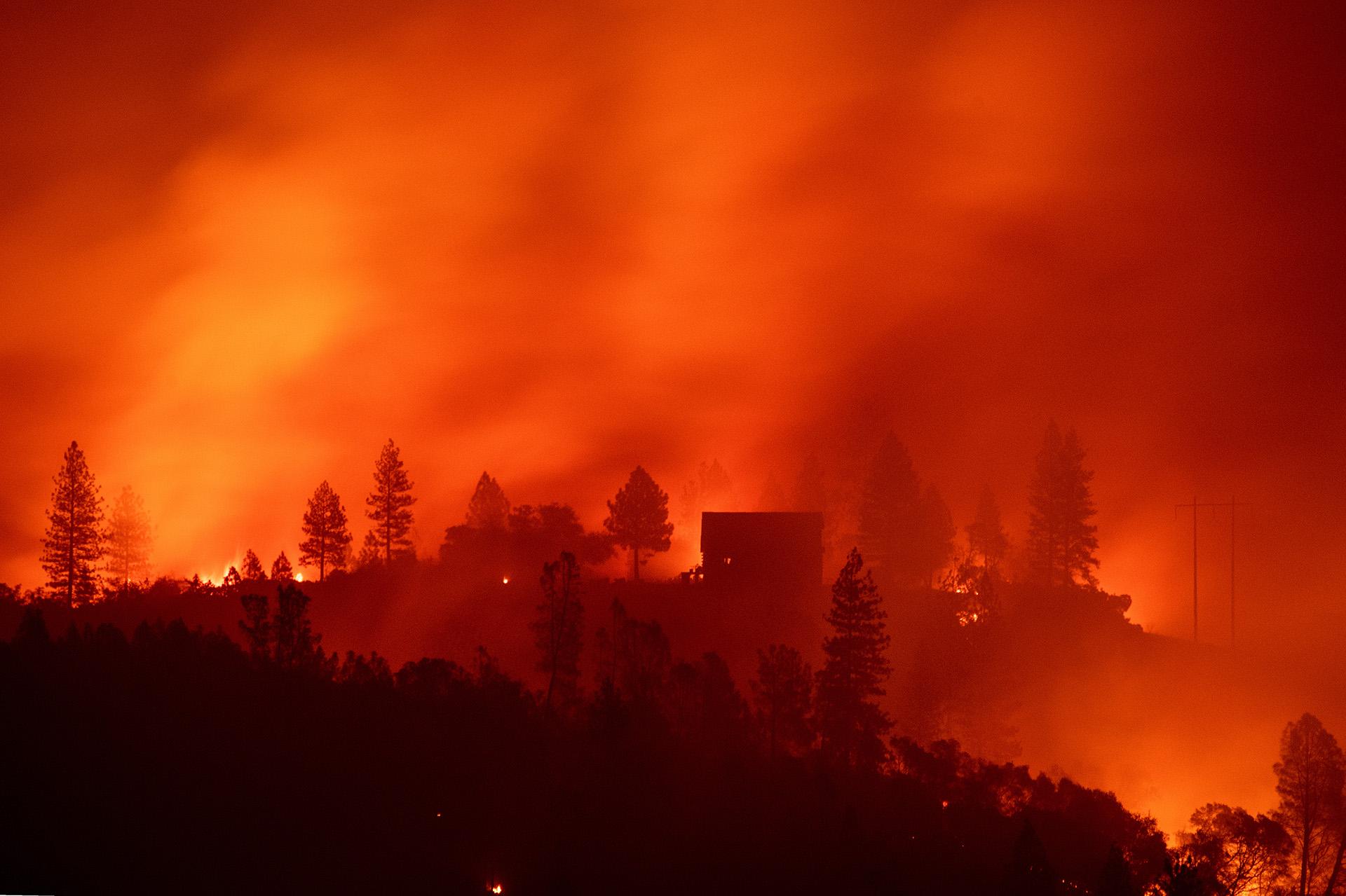 Las llamas cubren toda la superficie en Big Bend, California, el 10 de noviembre, en el peor momento del feroz incendio(Photo by Josh Edelson / AFP)