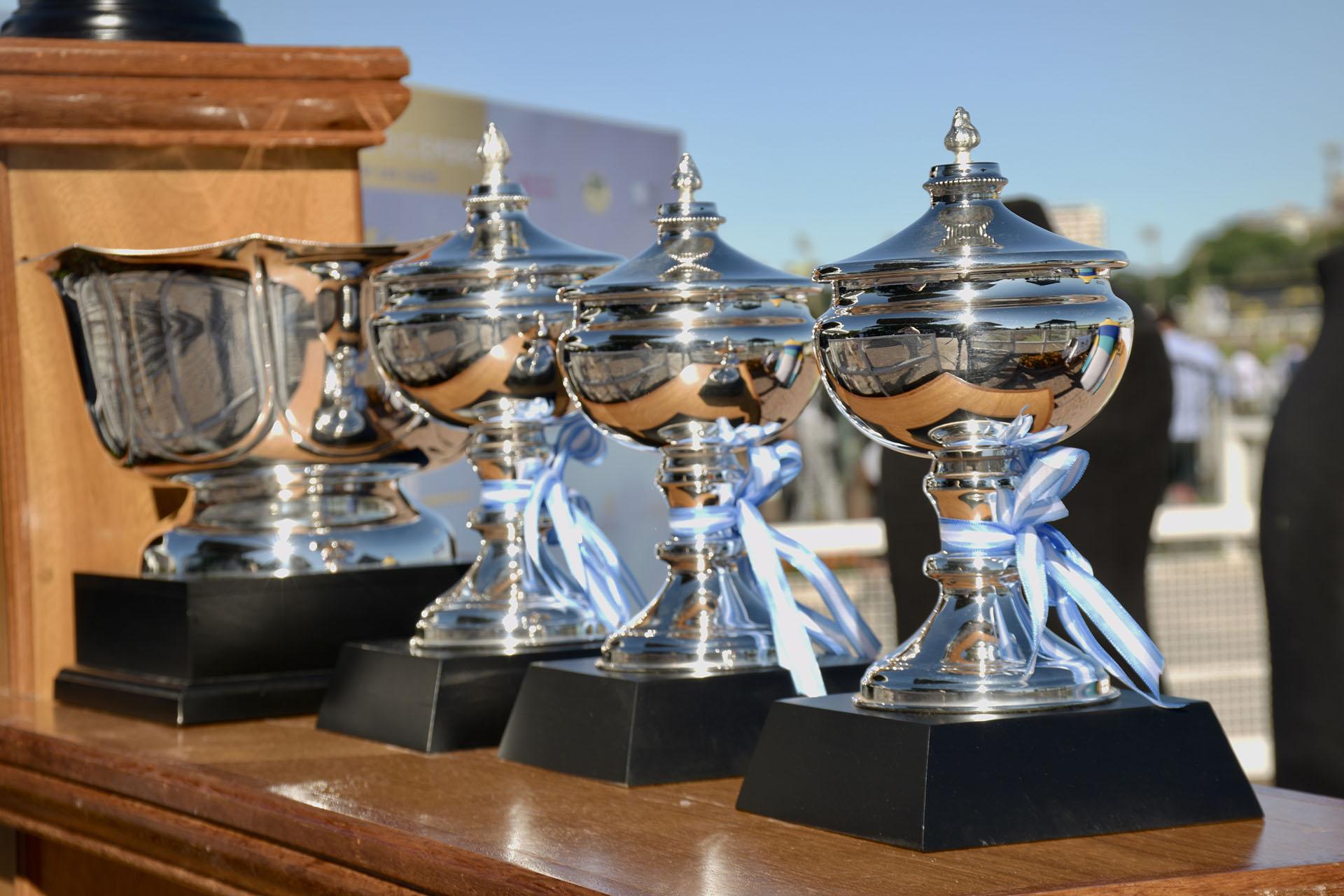 """Los grandes premios """"Carlos Pellegrini"""" entregados a los ganadores del 2018"""
