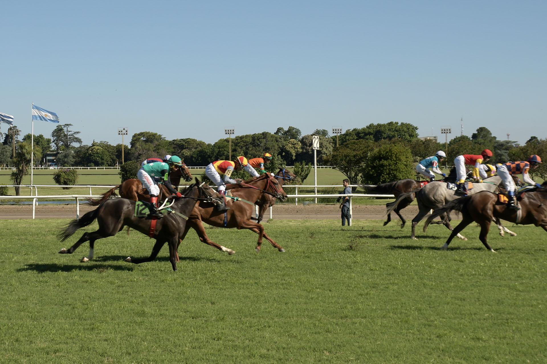 Los jockeys y los caballos, un espectáculo que disfrutó toda la familia