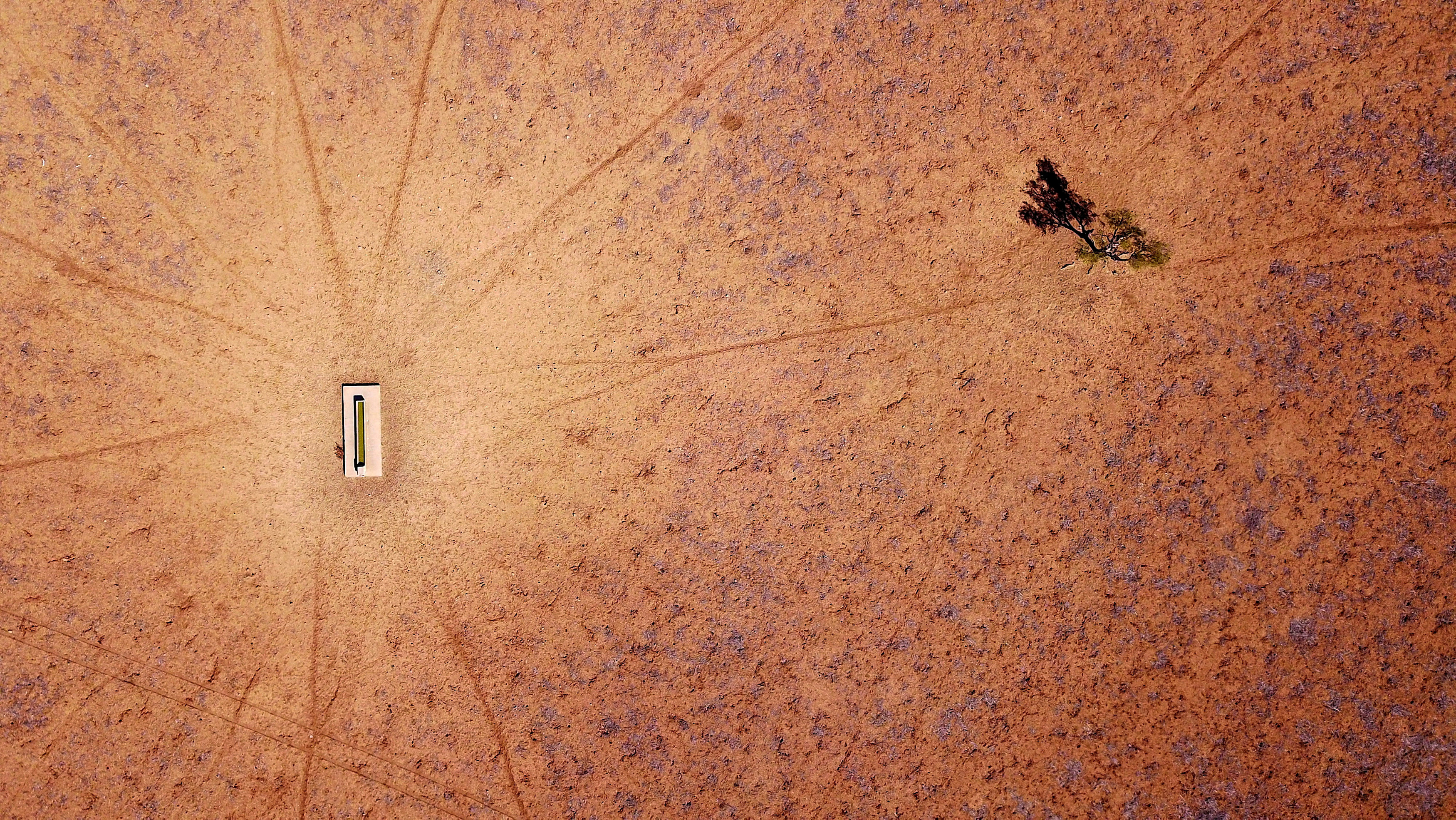 La sequía en el este de Australia, un fenómeno en aumento desde el 2012, fue particularmente fuerte este año, con temperaturas más altas que el promedio histórico. La cosecha fue bajísima y se sacrificaron animales por el alto costo del alimento