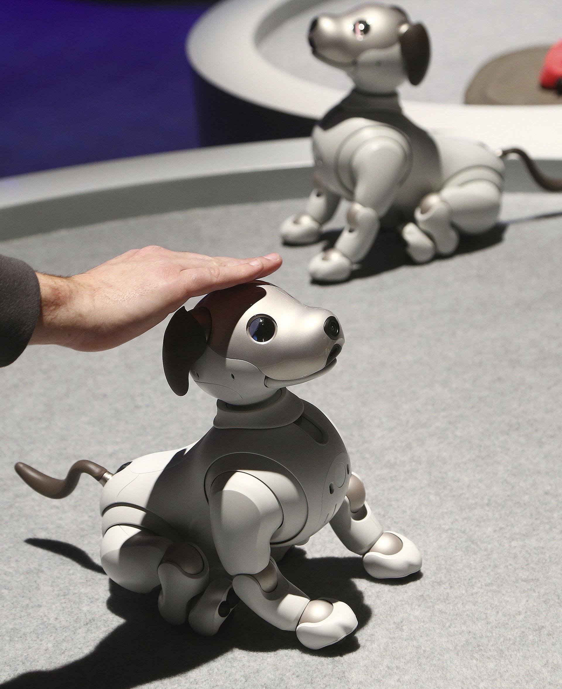 Aibo, el perro robot de Sony, fue uno de los productos más populares. Si bien no es nuevo, estuvo entre los favoritos de la feria (AP)