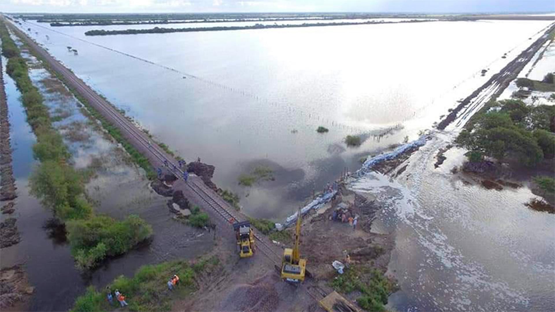 Frente al complejo panorama que se vive por las inundaciones en variasprovincias, el Senasa lanzó una serie de recomendaciones.