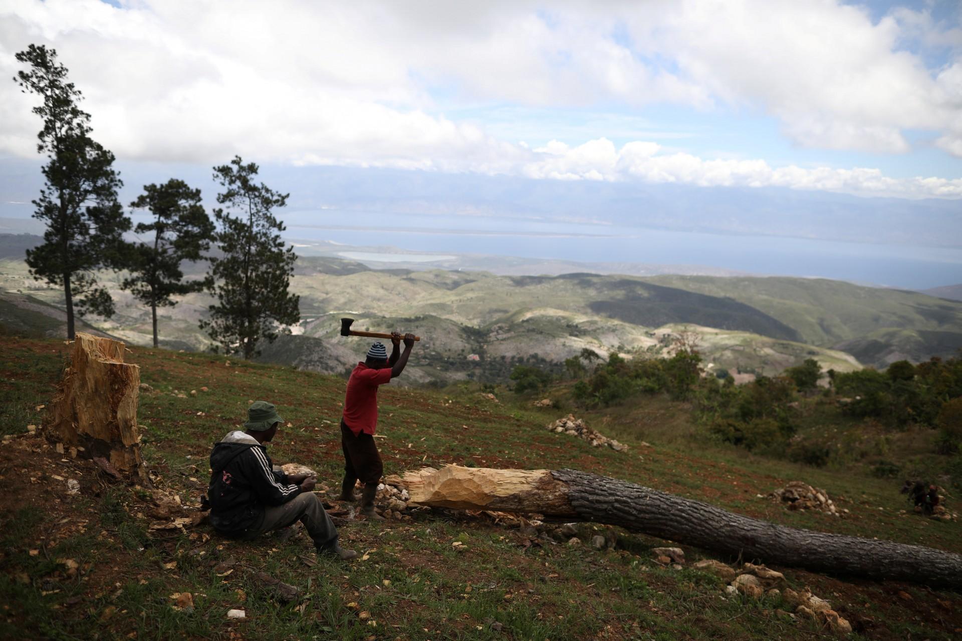 Un hombre corta un árbol en los campos de Chapotin, Boucan Ferdinand y República Dominicana al fondo, en el sendero que conecta Boucan Ferdinand y Chapotin, Haití, 11 de abril de 2018.