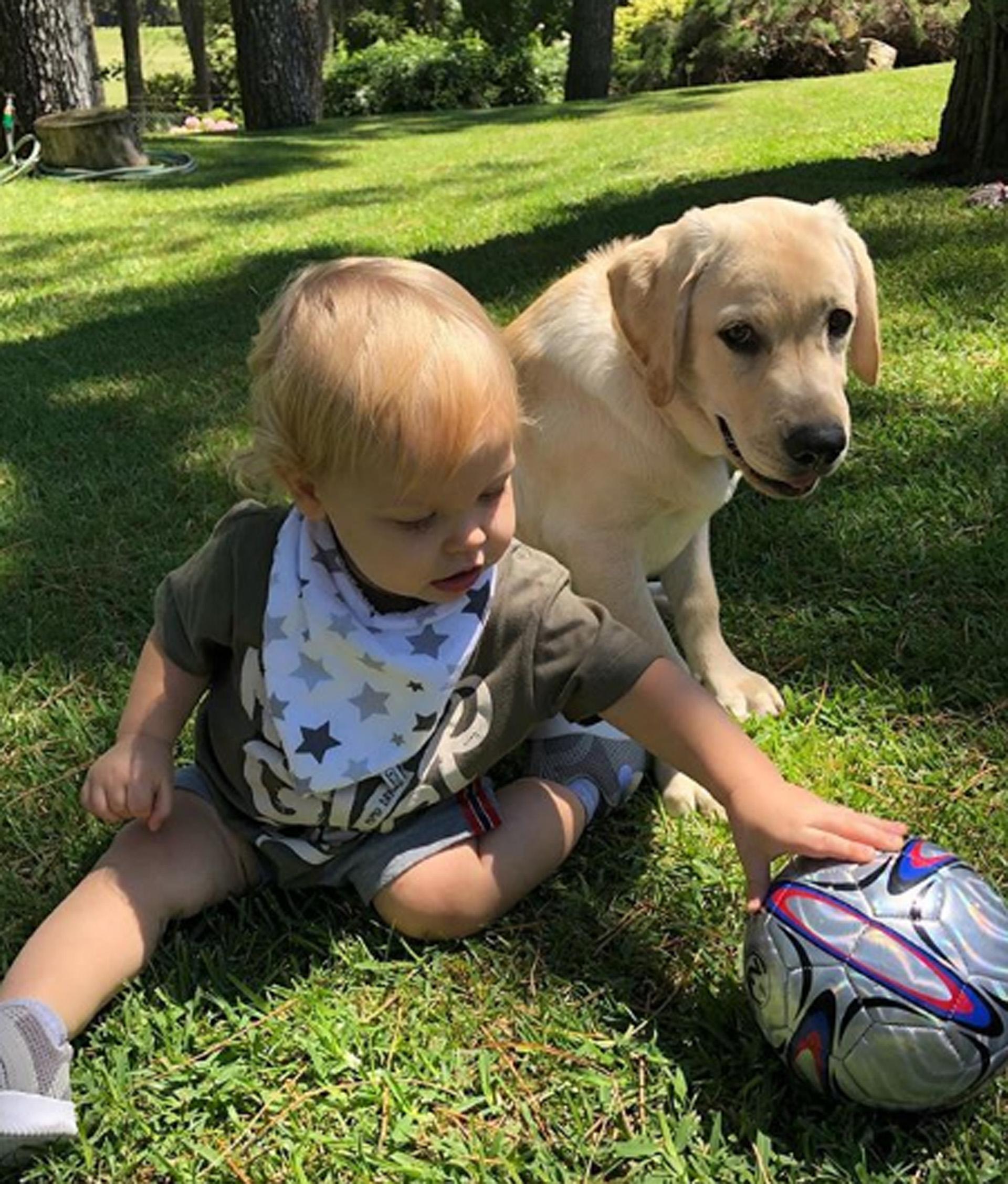 Al conductor y a su bebé los acompañó su perro Bailey