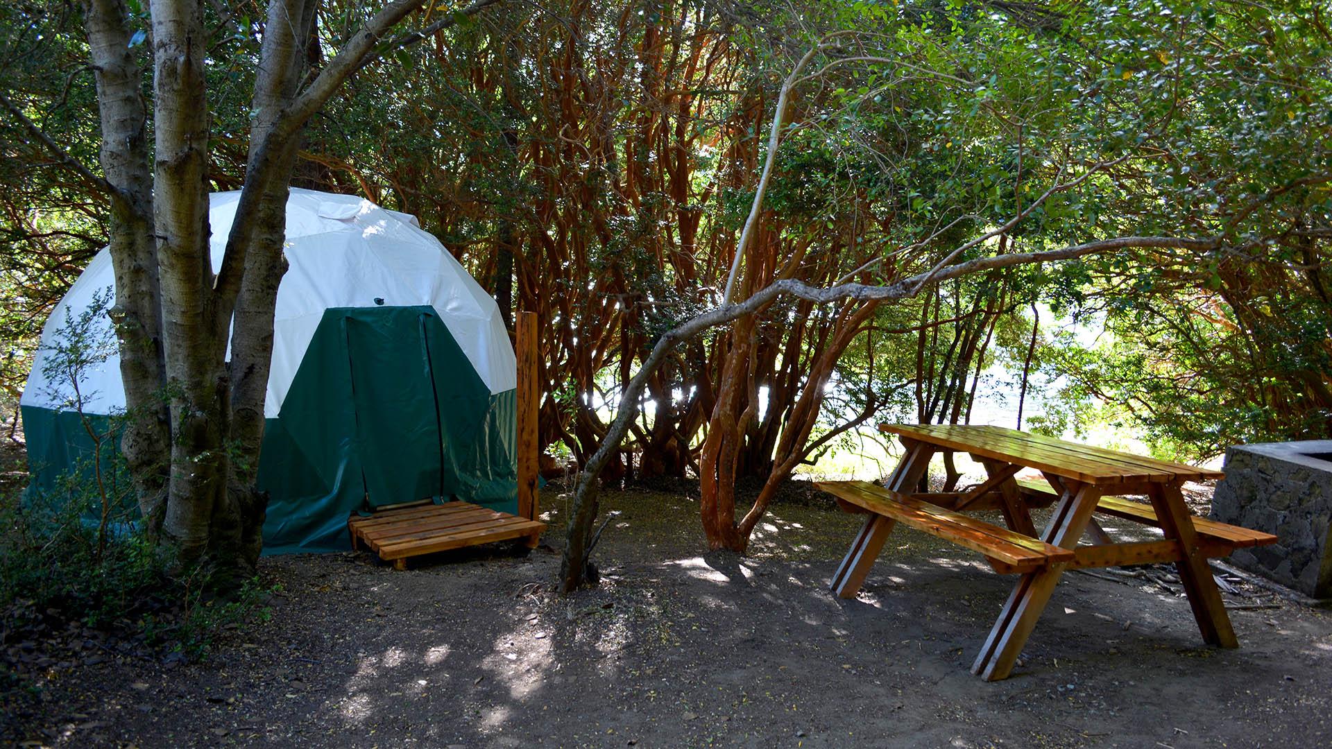 El Aura Lodge, inmerso en el Parque Nacional Los Alerces, montó sus domos en un espacio de una hectárea sobre la costa de Lago Verde y están rodeados por bosque de arrayanes (El Aura)